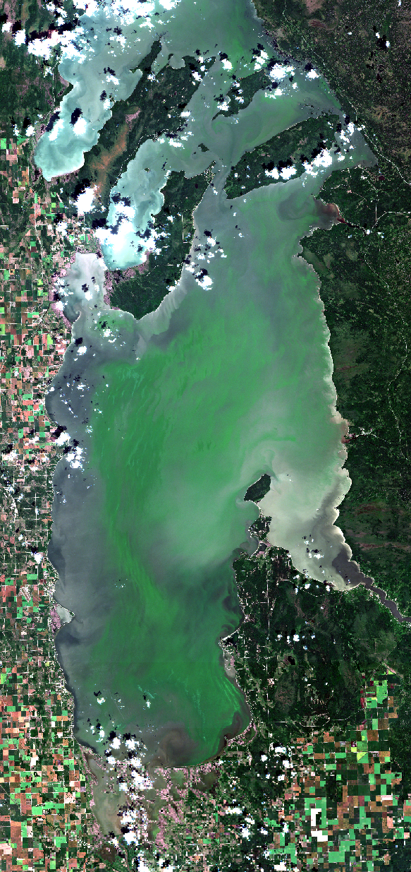 August 4, 2019. After persistent movements of floating algae with the west wind we can see up-welling along the west shore. Up-welling of bottom water, lacking floating algae, occurs on both shores when offshore winds persist for a few days that sets-up a rotational current. This appears as a dark band along shore as the relatively clear water reflects less light back to the satellite. Here, on the east shore, wind-driven currents intersect the erratic shoreline to concentrate blooms in some areas (north of Patricia Beach) and also creates some nearshore pockets of water with less algae in other areas like Grand Beach and intermittently to the north including Victoria Beach. Traverse Bay is now starting to show algae drifting in from the north. Traverse Bay has been important to many East Side cottagers and beach-goers this year. Click    Here    for the high resolution image (currenty uploading). Modified ESA data.