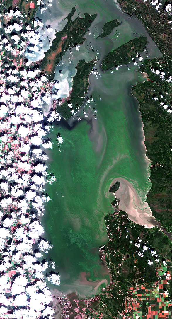 August 9, 2019. Clouds to the west and extensive algal blooms. The east beaches have strongly variable conditions. Zoom into this image and look at Patricia Beach. The south end is not a good swim, yet less than 1 km to the north - NICE!! Zoom into this image    here   .