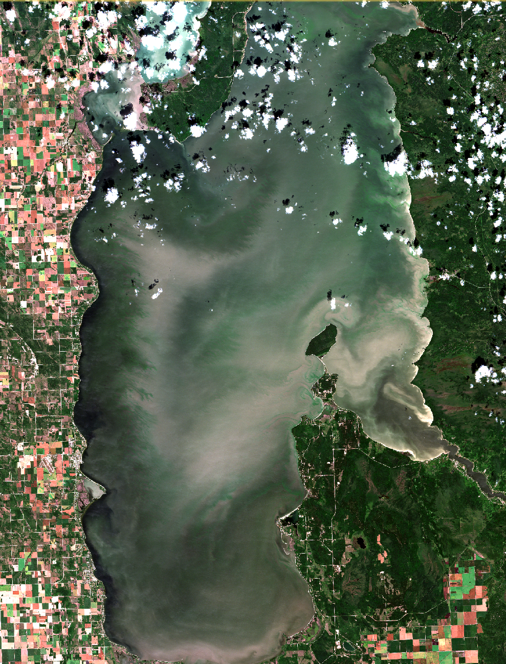 August 19, 2019. Westerlies continue to extend this summers dominant algal patterns. The dark band of water, which now extends along the entire west shore, indicates bottom water mainly free of algae has moved towards shore as offshore winds move the surface waters east. The algal blooms imaged here are strongly mixed in the water as this image was captured after strong west winds on Sunday August 18, less than one day before the satellite overpass. The intensity of these blooms look a bit more subdued when compared to images below captured in late July and early August under calm conditions when most of the algae floated to the surface. Bands of algae are now widespread in all areas of the basin, including Traverse Bay. The effects of winds on the blooms can are evident as branch-like patterns that be seen on an west-to-east axis, and in particular north of Gimli. If you are travelling to the lake the west beaches or Patricia Beach are the best option now. Most the east beaches are now exposed to varying amounts of algal blooms as the bands of algae move with the west wind. Winds later this week are forecast to shift east and then later south which may help the east-side this weekend. Click  here  to look at the high resolution image data and see the waves push blooms into the Hillside  Beach lagoon! Modied ESA data.