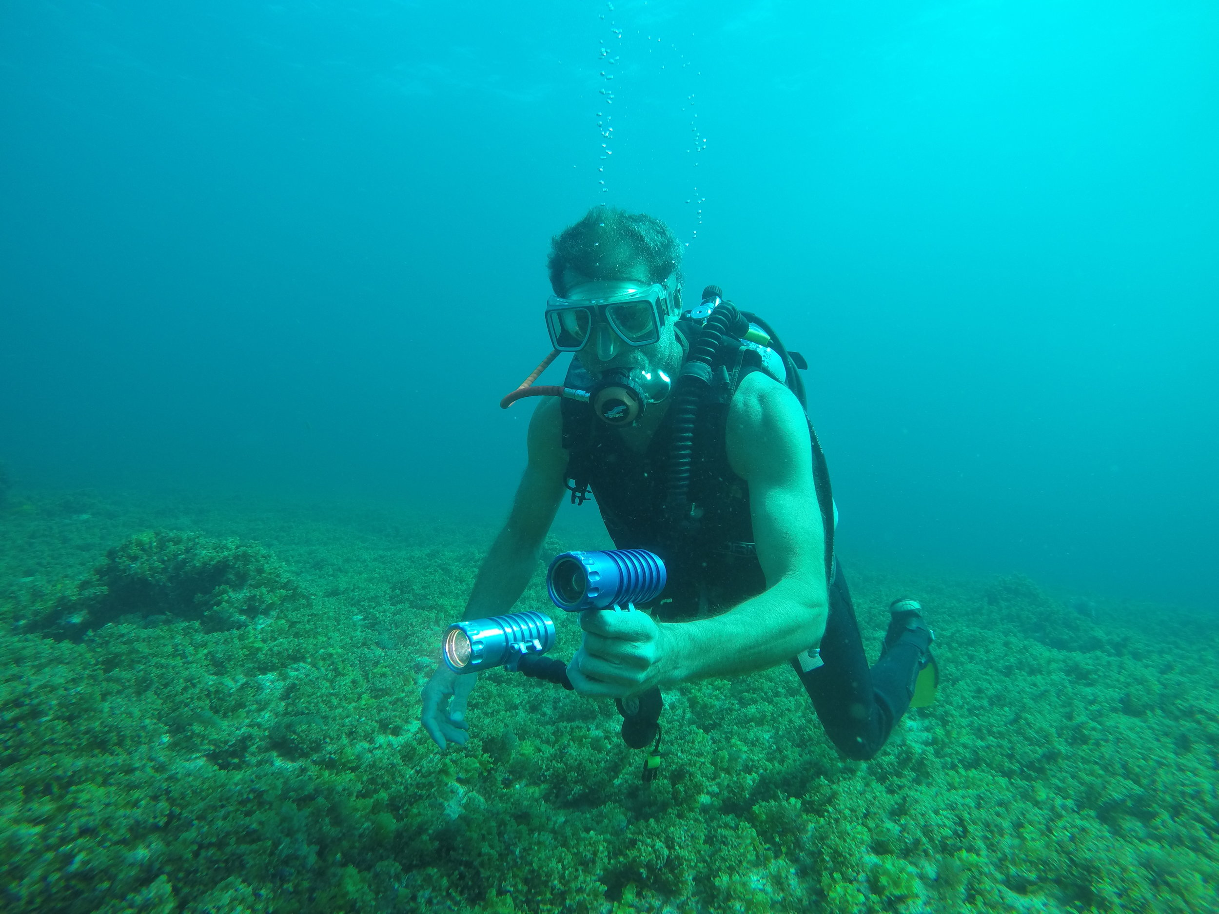 Torch/Camera Combo is perfect for diving in the Caribbean