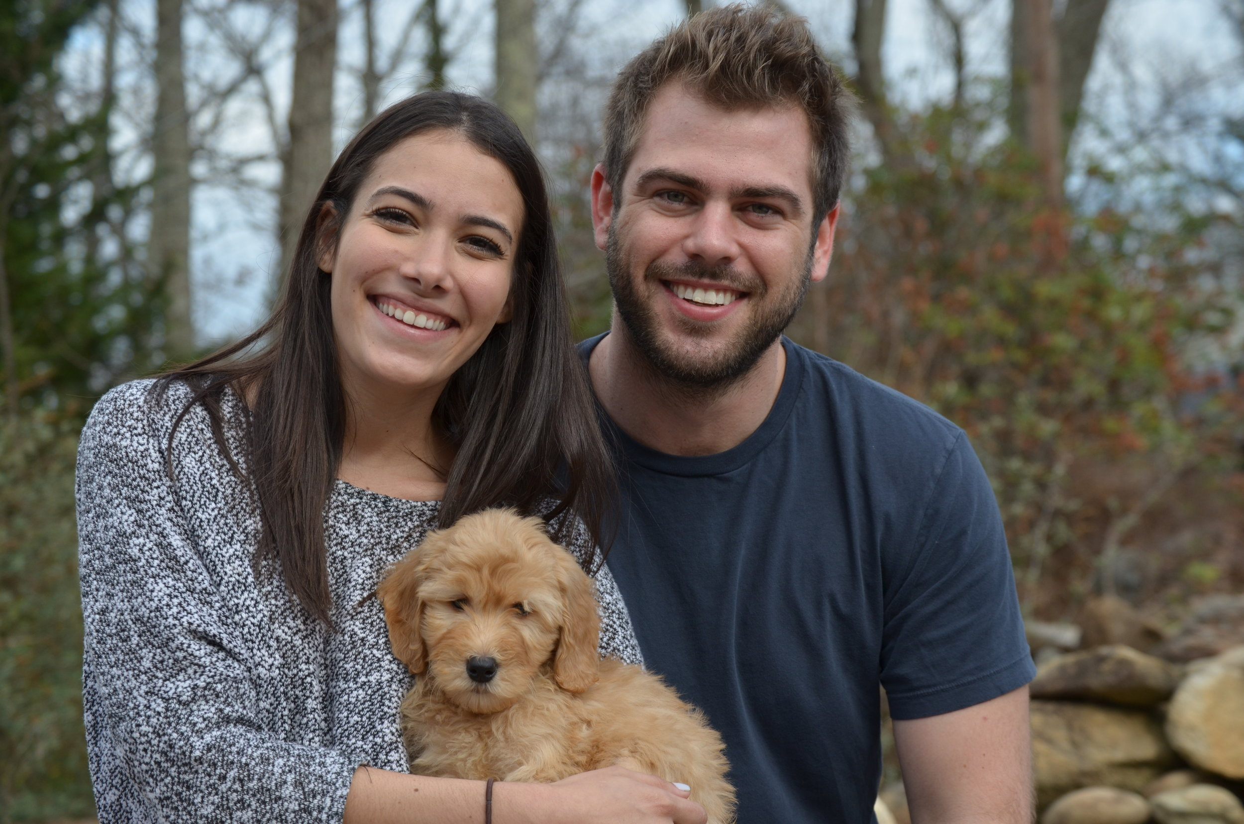 Allie is a Goldendoodle who loves her new parents