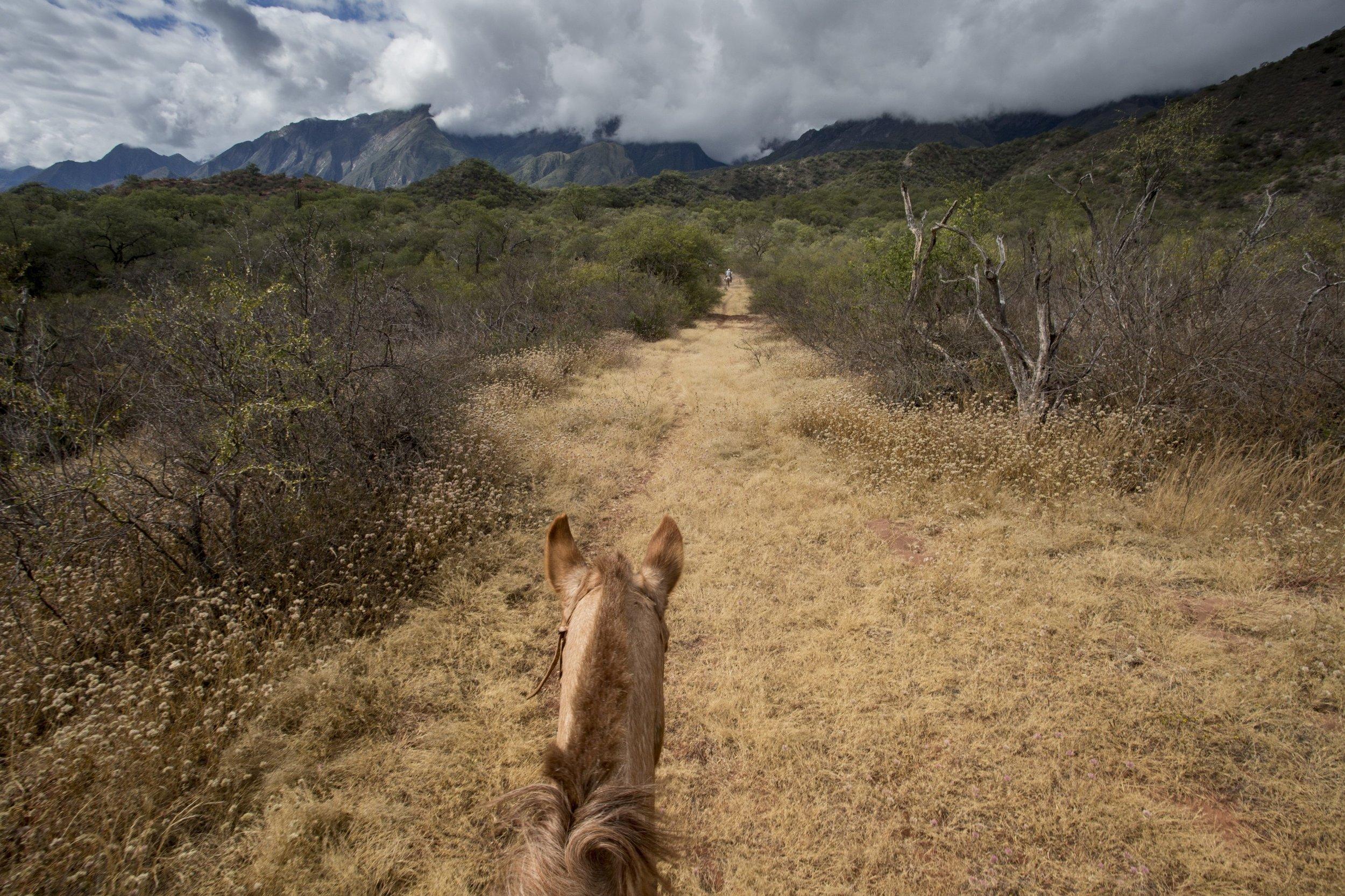 Riding through Condor Valley and towards Mount Creston