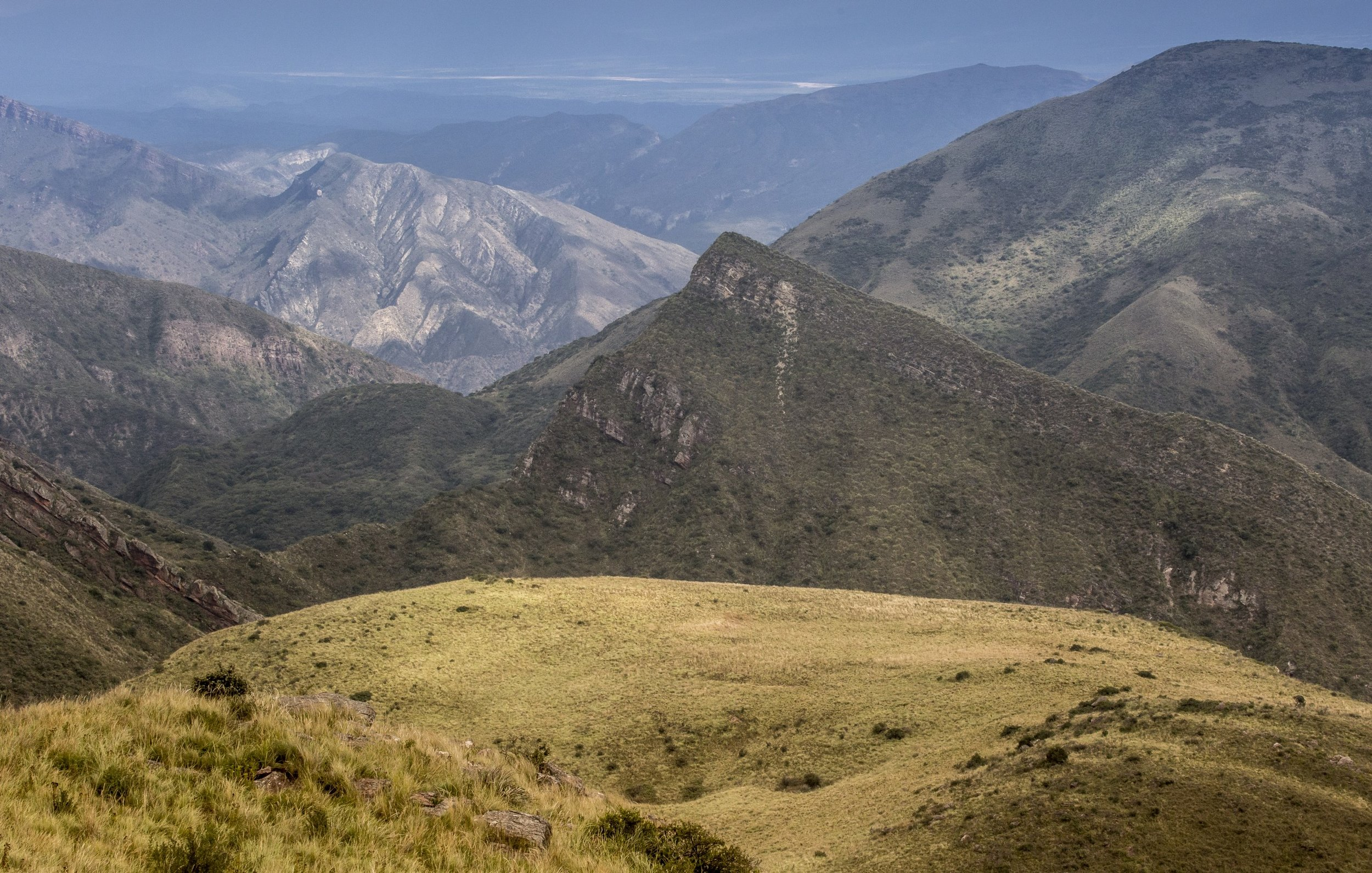 robin moore national geographic cactus salta condor valley view from mt creston.jpeg