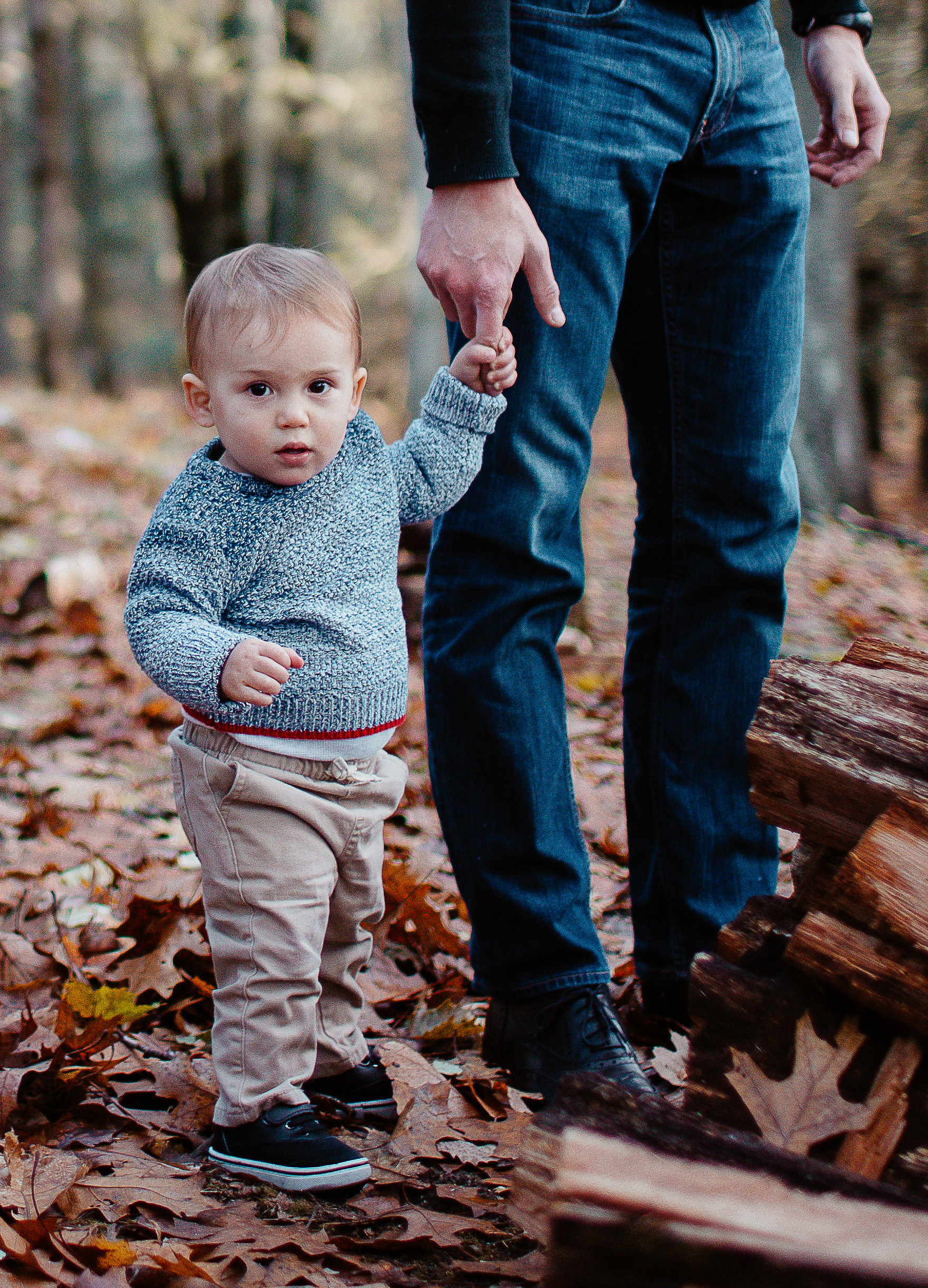 Greater Boston family photographer Joy Uyeno Sudbury toddler boy with dad