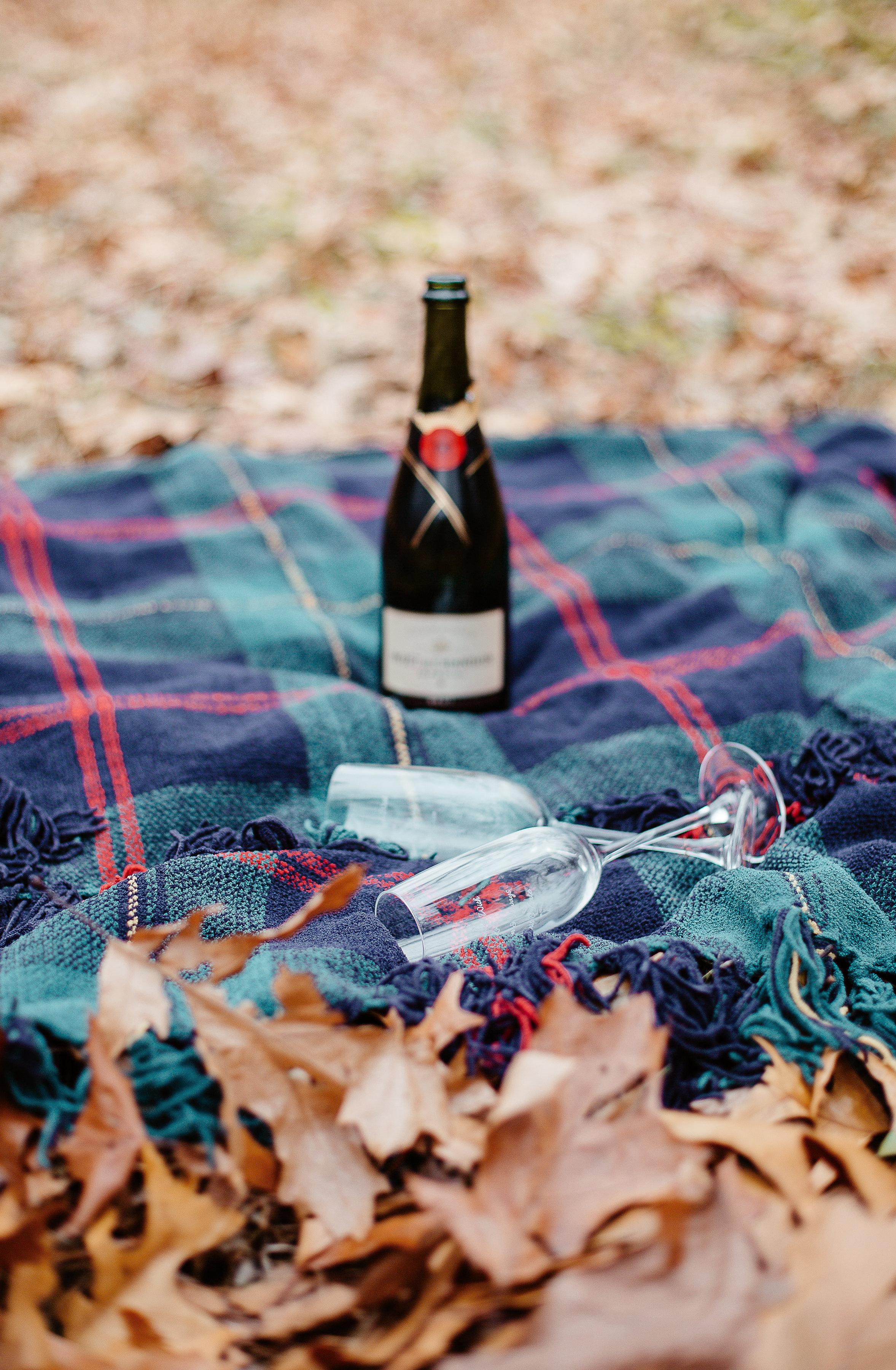Joy Uyeno Greater Boston engagement photographer detail shot of etched champagne glasses