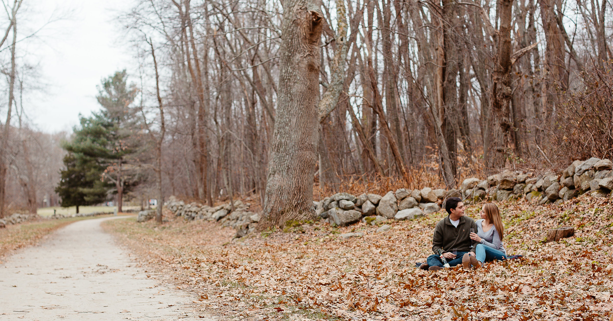Joy Uyeno Greater Boston engagement photographer couple in the woods of Concord