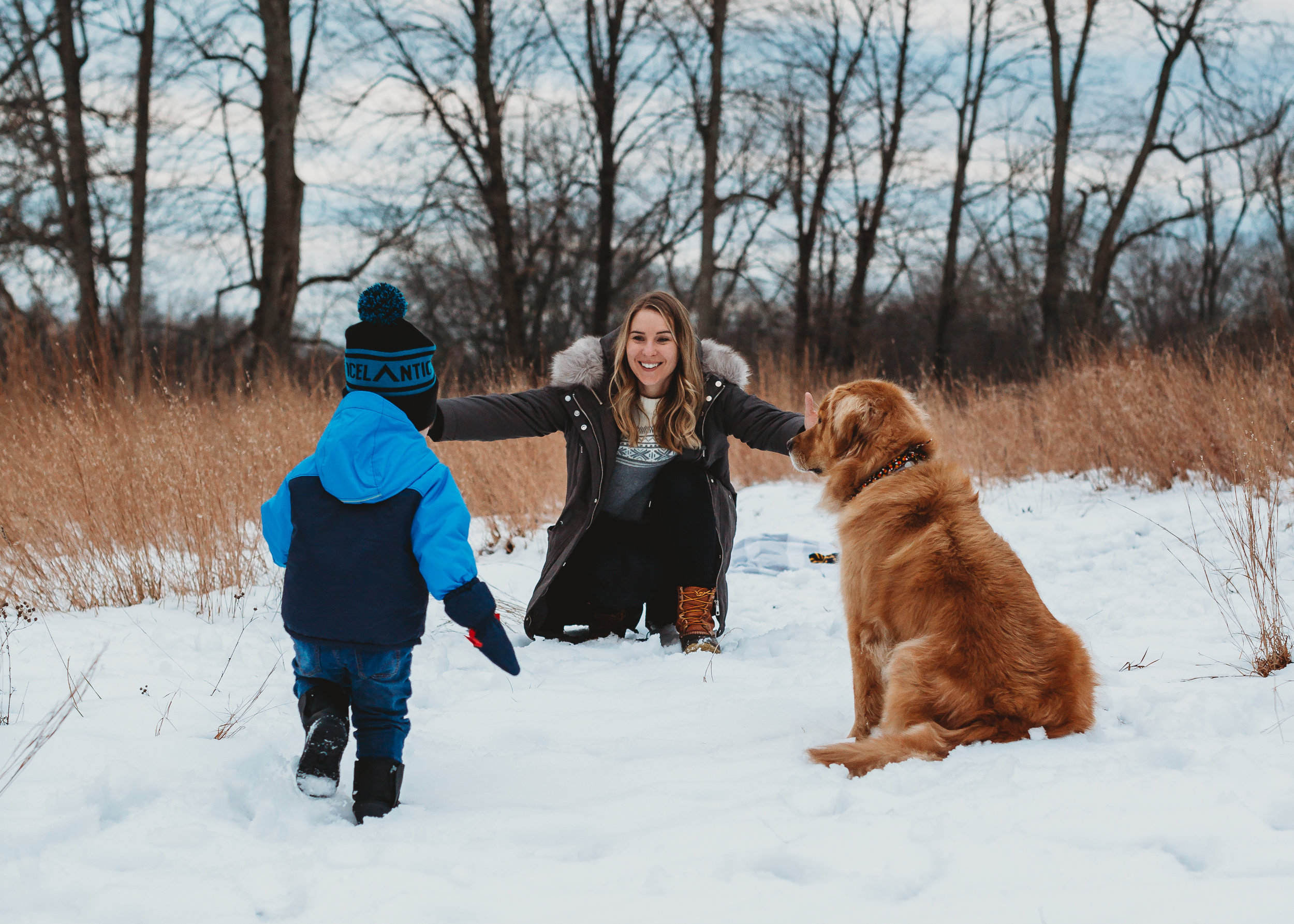 Mom, toddler and golden retriever in the snow in Concord, MA. Concord family photographer.