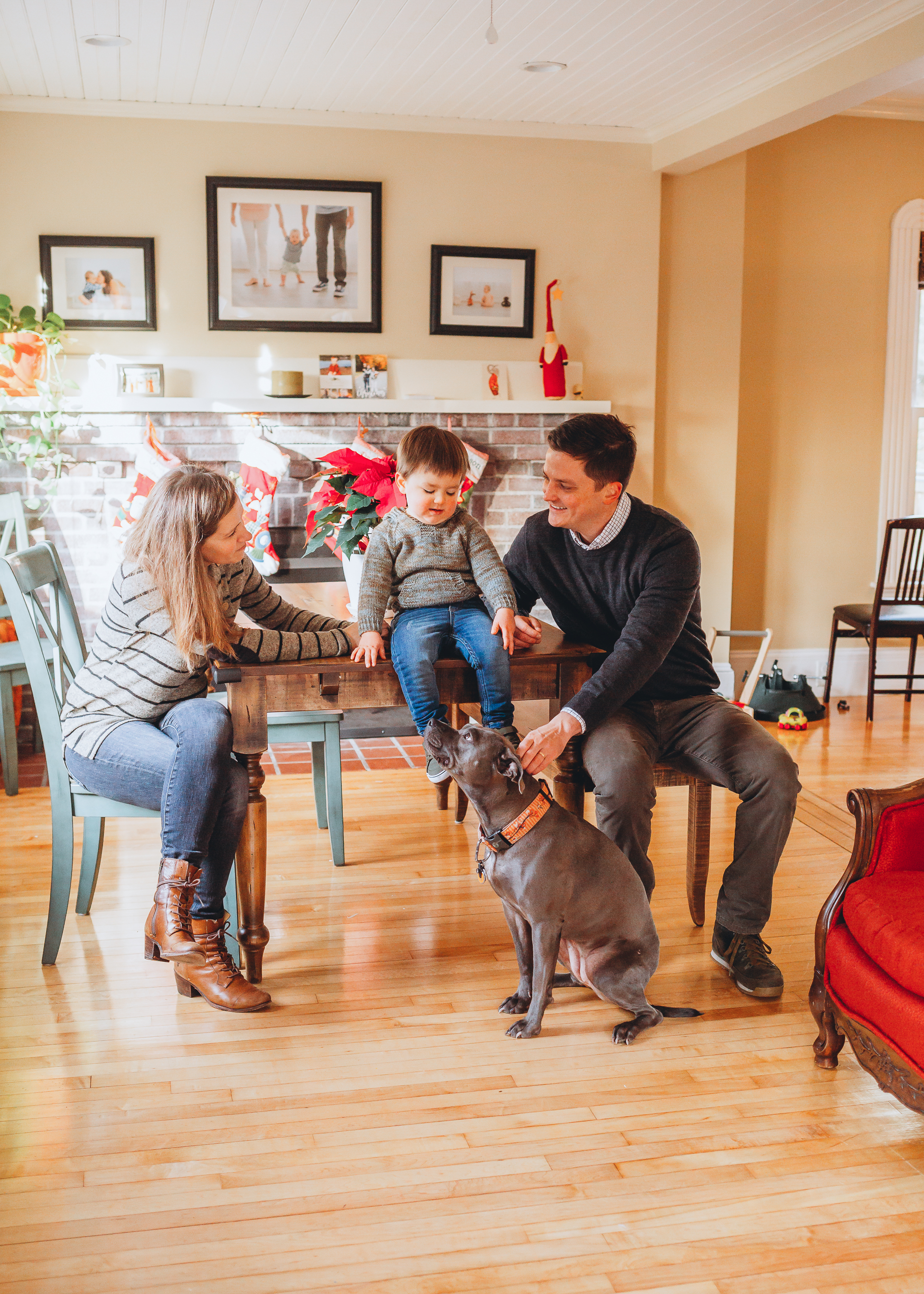 A sunny Sunday morning in their new home in Melrose, Massachusetts. Boston family portraits by Joy LeDuc.