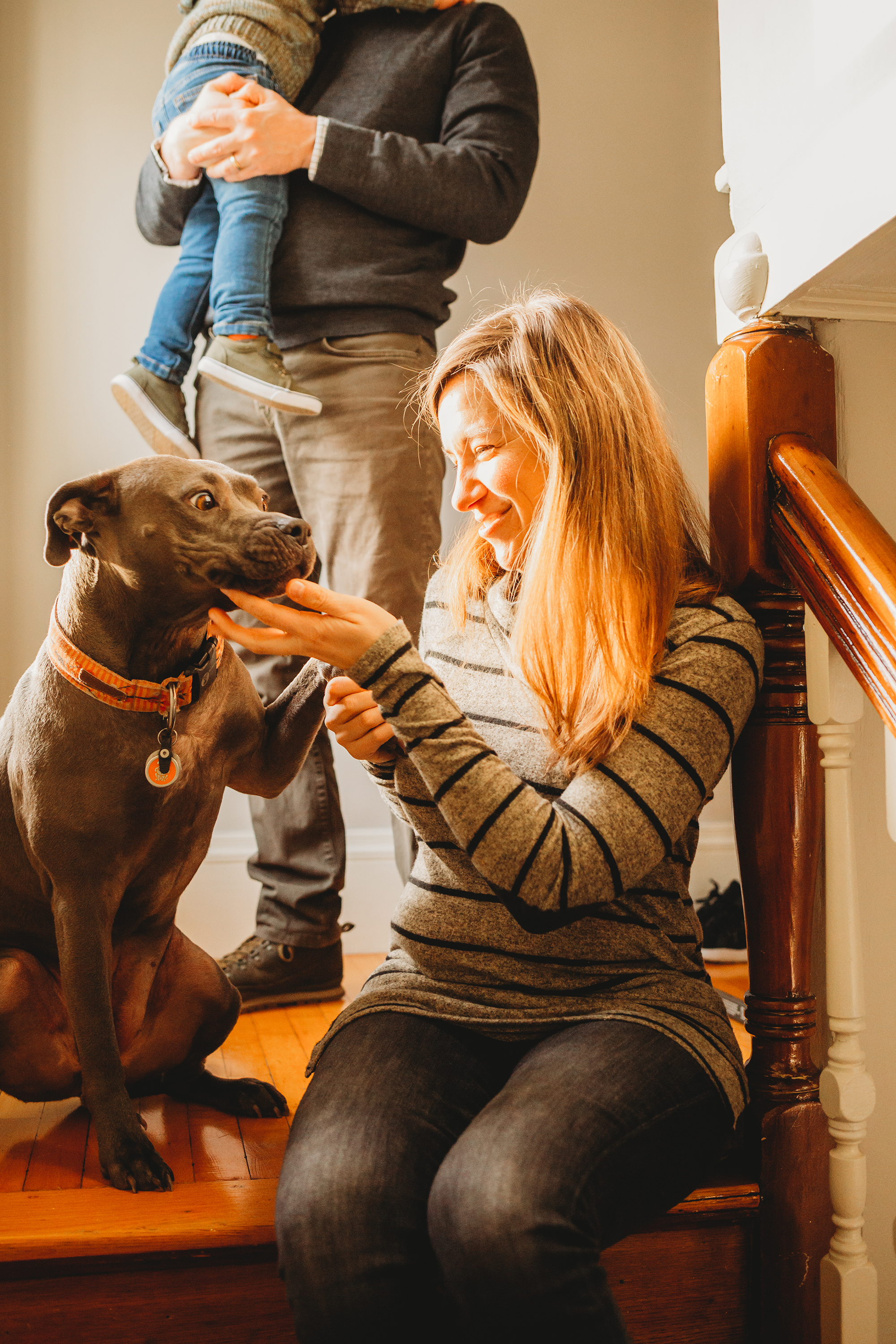 Pets are always welcome during in-home family sessions! Melrose at-home lifestyle photos. Boston family photographer.