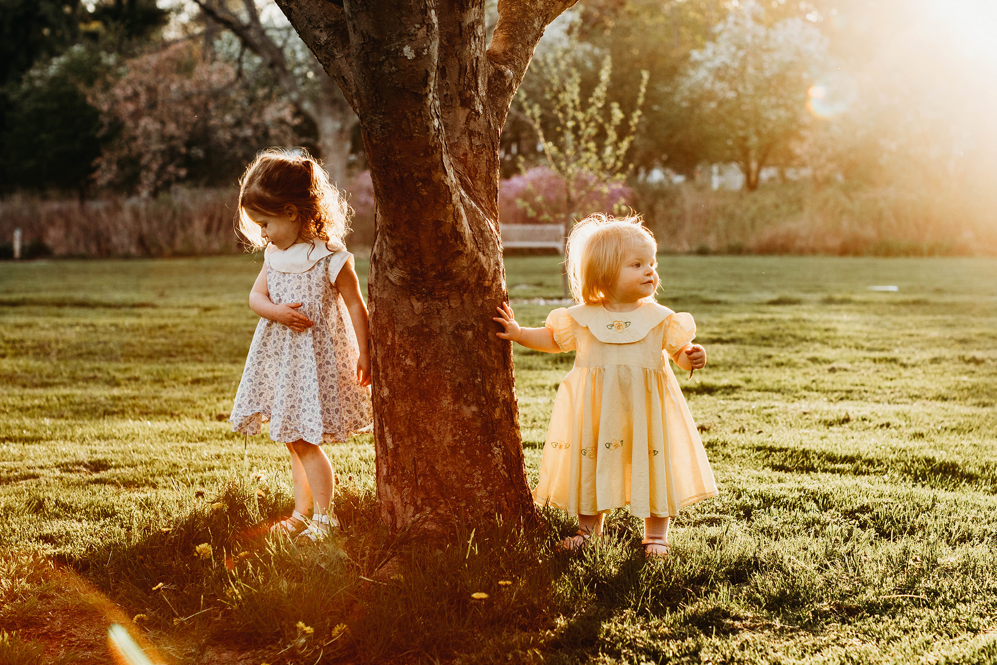 Little Girls in Golden Hour | Acton Family Photographer