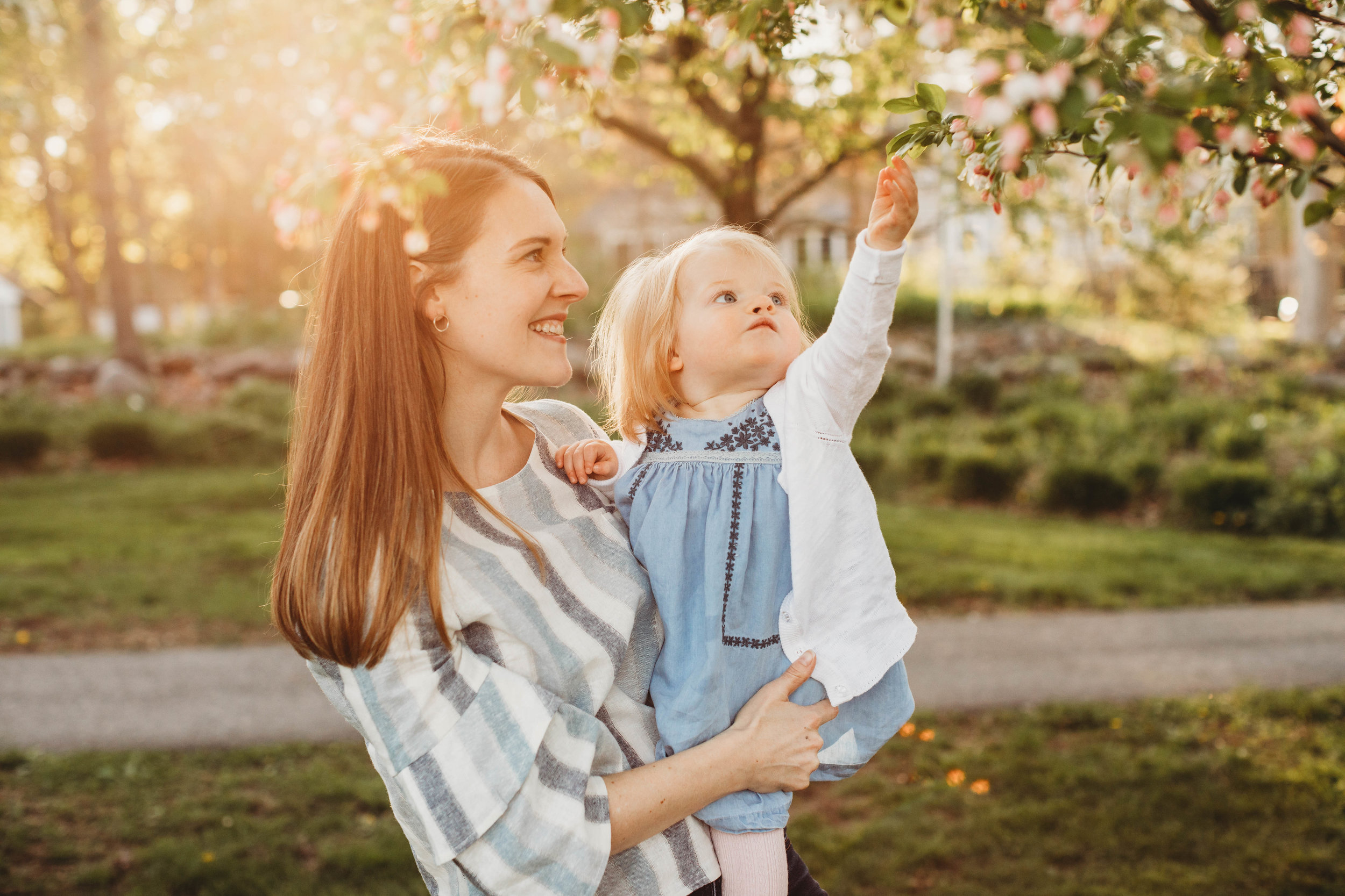 Beautiful springtime light at the Acton Arboretum in Greater Boston. Family photographer Joy LeDuc.