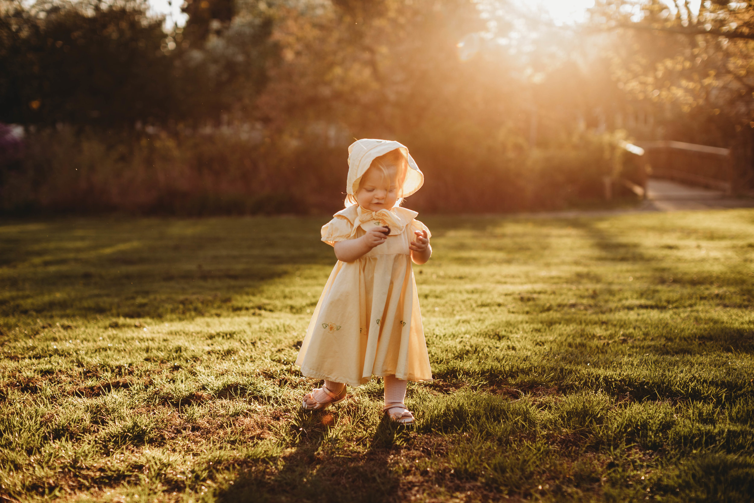 Wearing her great grandmother's baby gown. Golden hour toddler portraits. Acton Arboretum, Massachusetts.