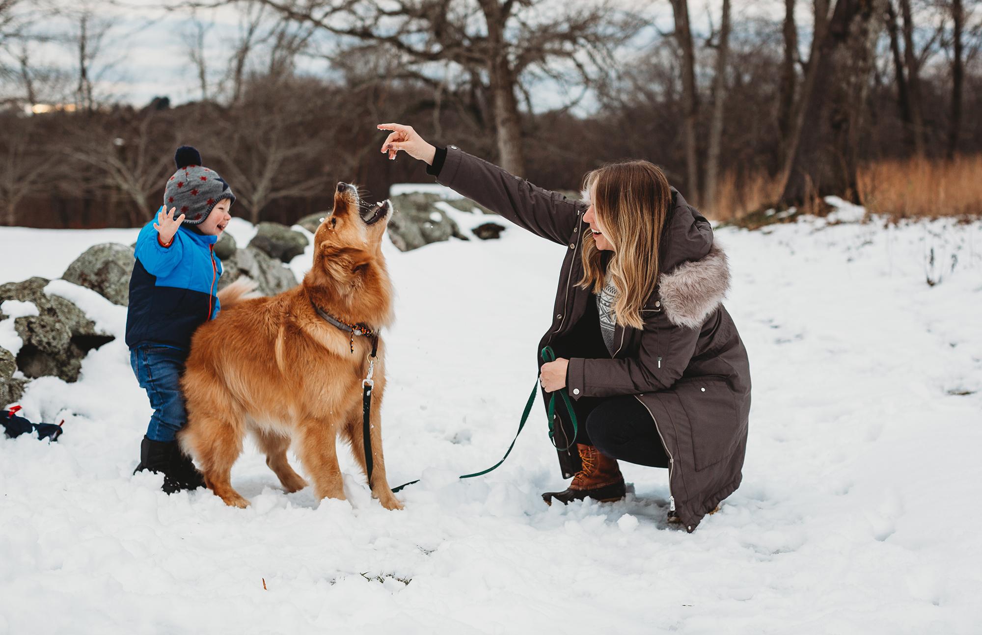 boston-family-photographer-weather-new-england.jpg