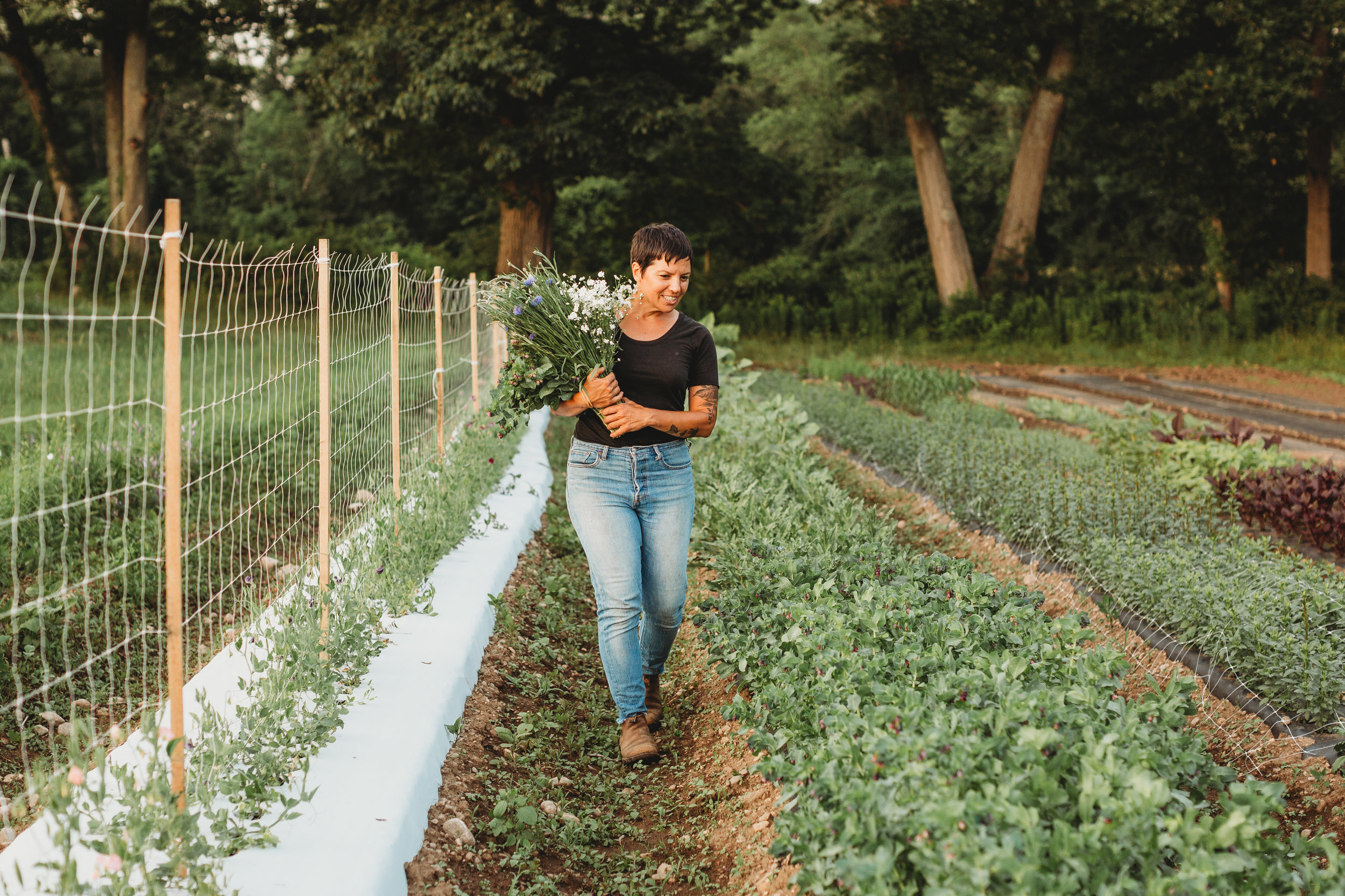 Golden hour session for flower farmer Mel Hardy in Concord, MA. Documenting her first season as the owner of Field Edge Flowers.
