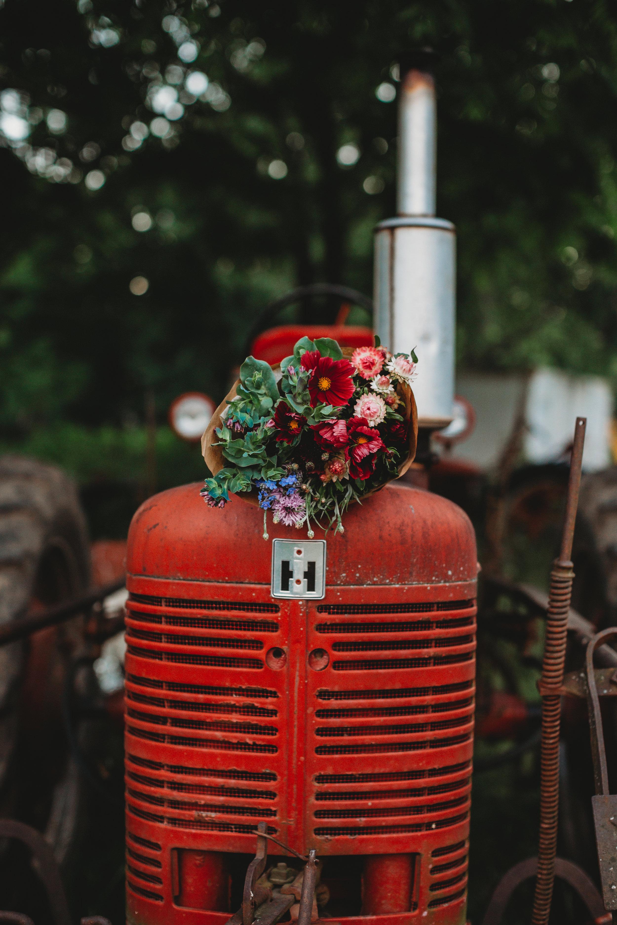field-edge-flowers-boston-lifestyle-branding-photographer-joy-leduc-22.jpg