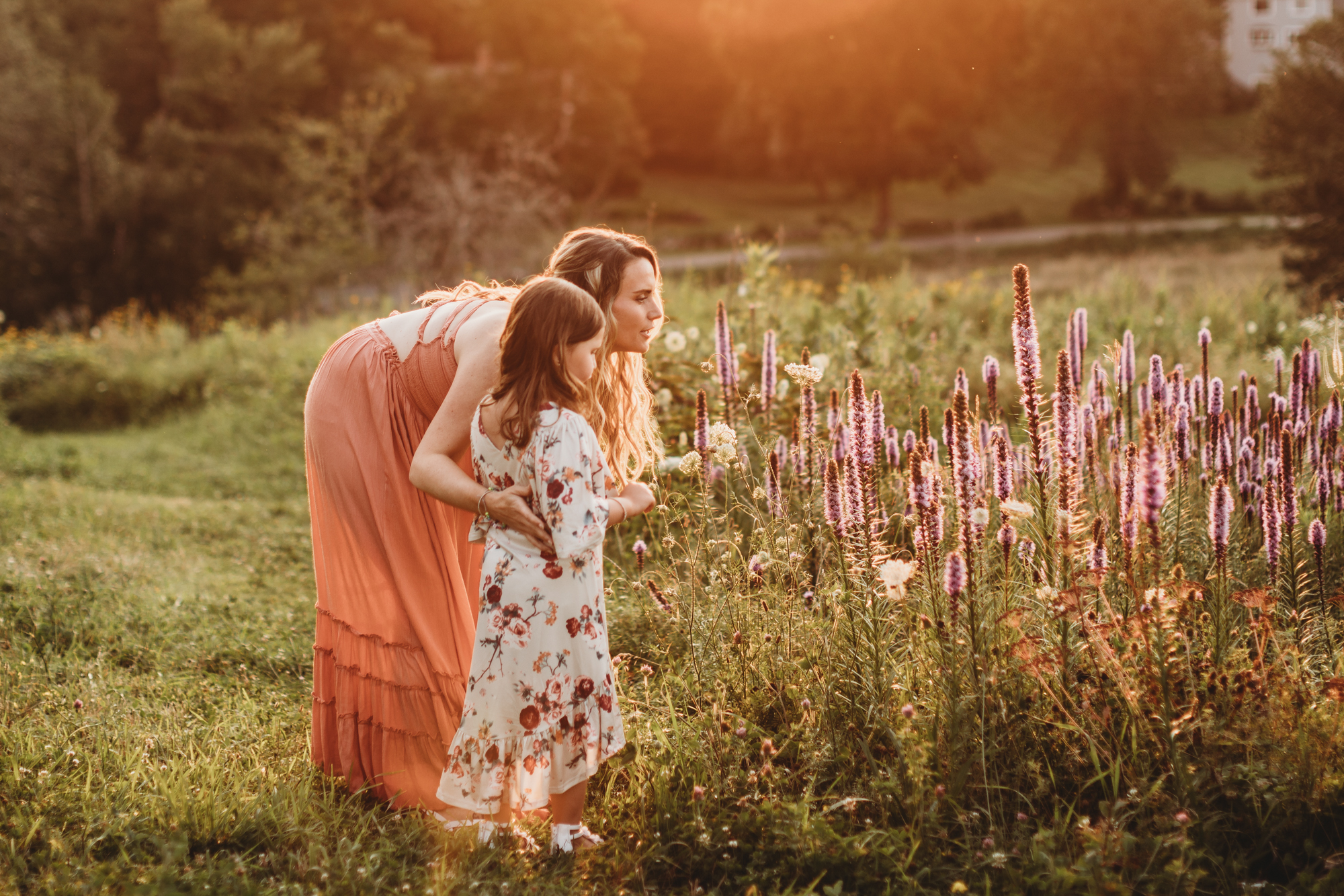 Mother and daughter smell the Framingham, Massachusetts wildflowers during their golden hour family portrait session. Greater Boston natural light photographer. Lifestyle photography.