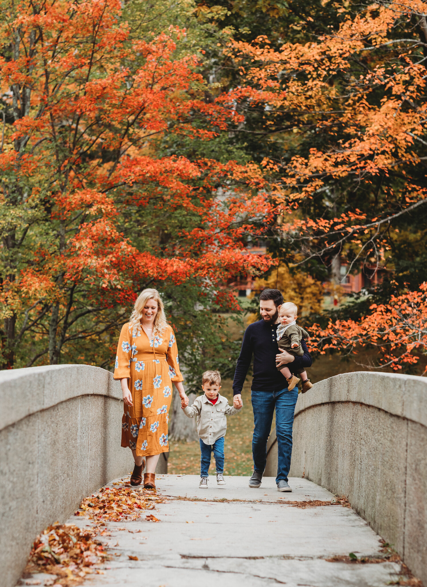 Sudbury family of four (one baby boy, one toddler boy) holding hands and walking over a bridge beneath beautiful, bright foliage in October. Massachusetts families should book as early as possible in order to get family photography spots in the fall.