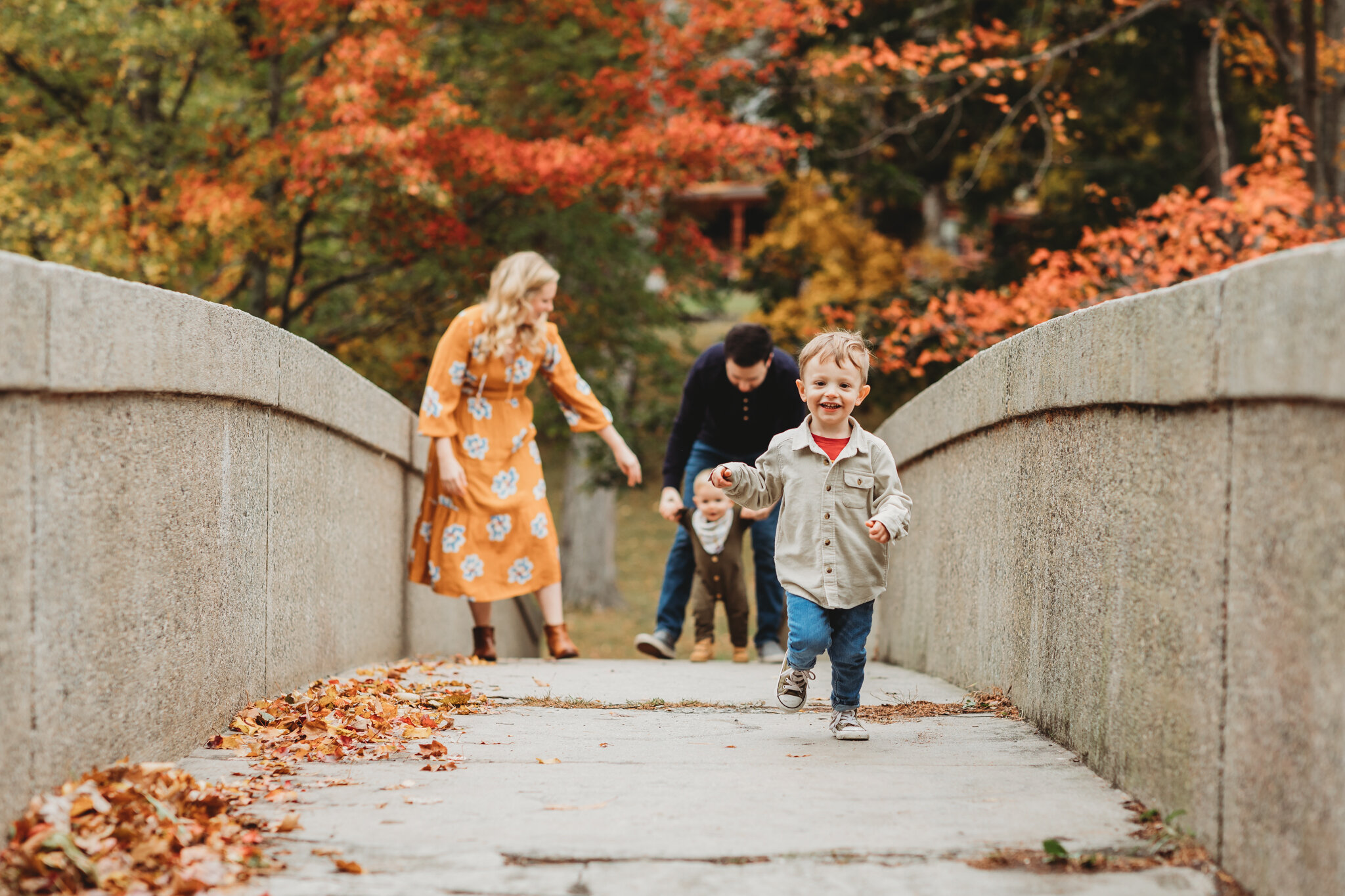 3-year-old running over a stone bridge during the peak foliage season in Massachusetts during his family's photo session. Sudbury family photographer Joy LeDuc shares her top tips for getting a coveted family photo session during this season.