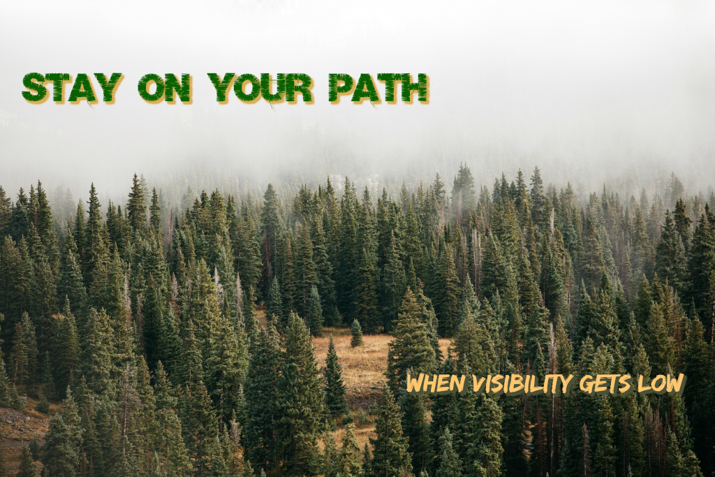 B 180201 - stay on your path.jpg