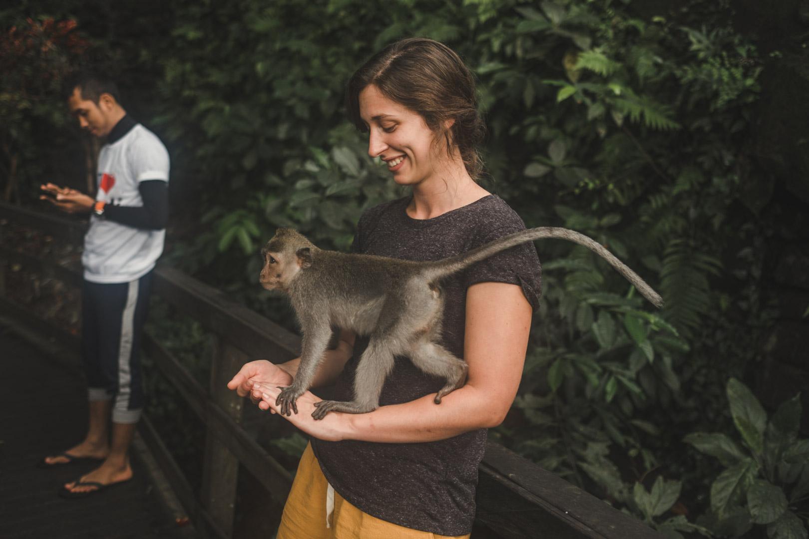 monkeyforest-1.jpg