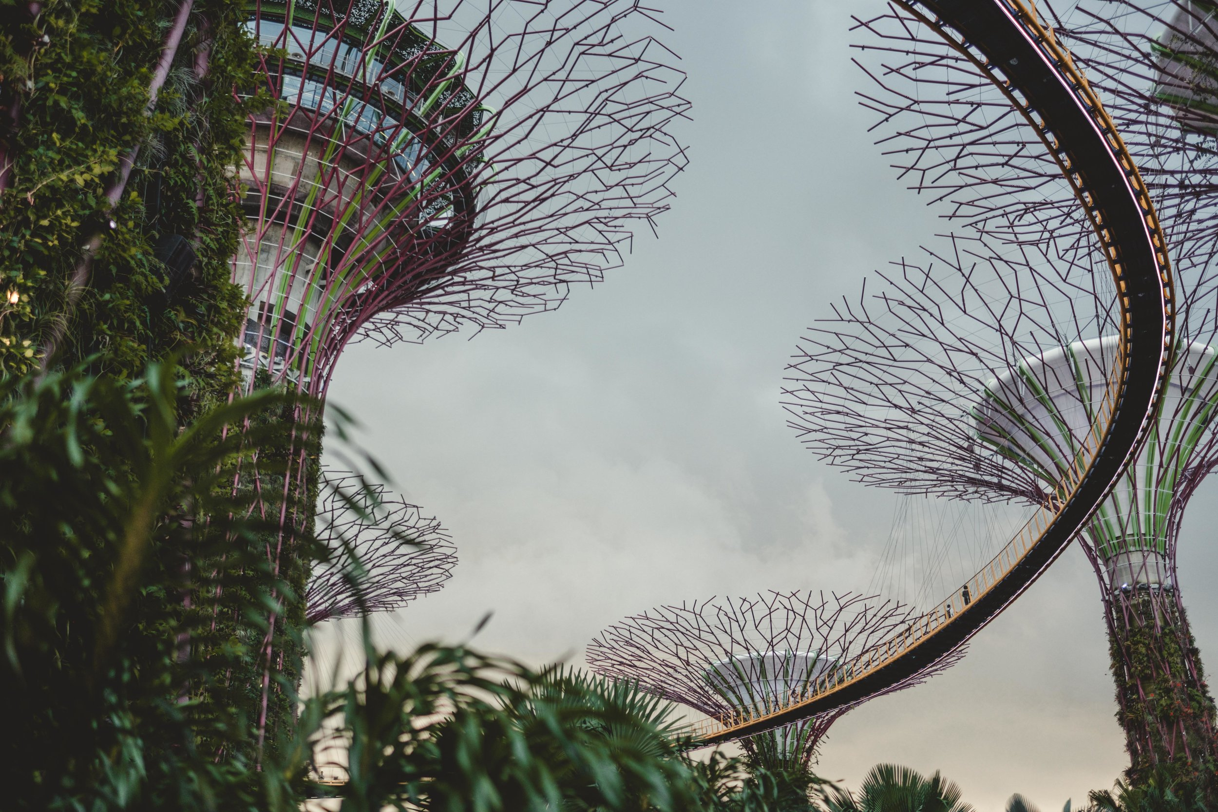 SINGAPORE-1-12.jpg