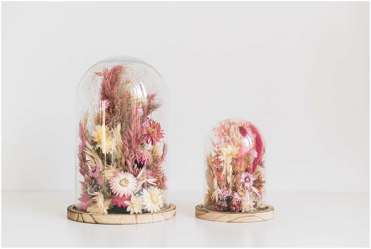 Two pink dried floral bells from Atelier Prairie Paris