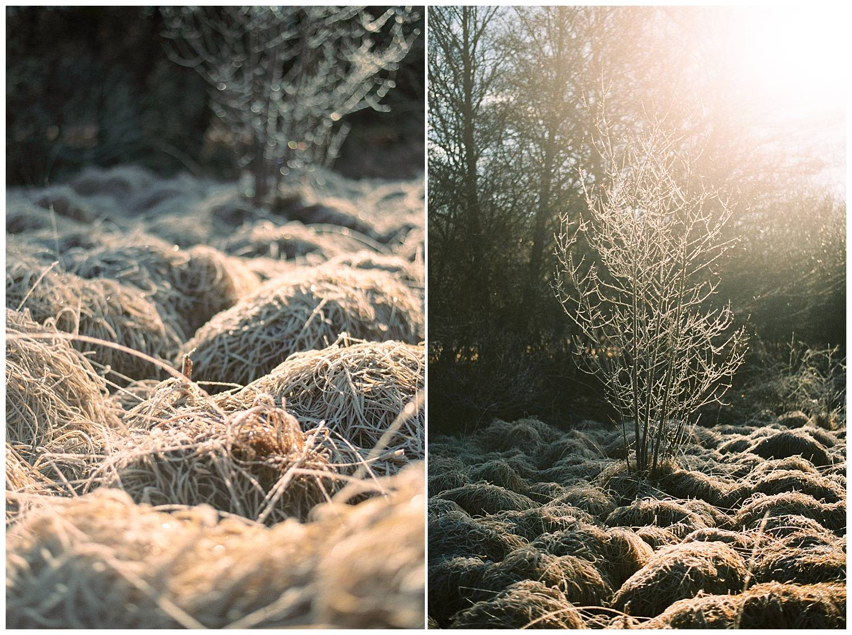 Freezing landscape during Christmas holidays