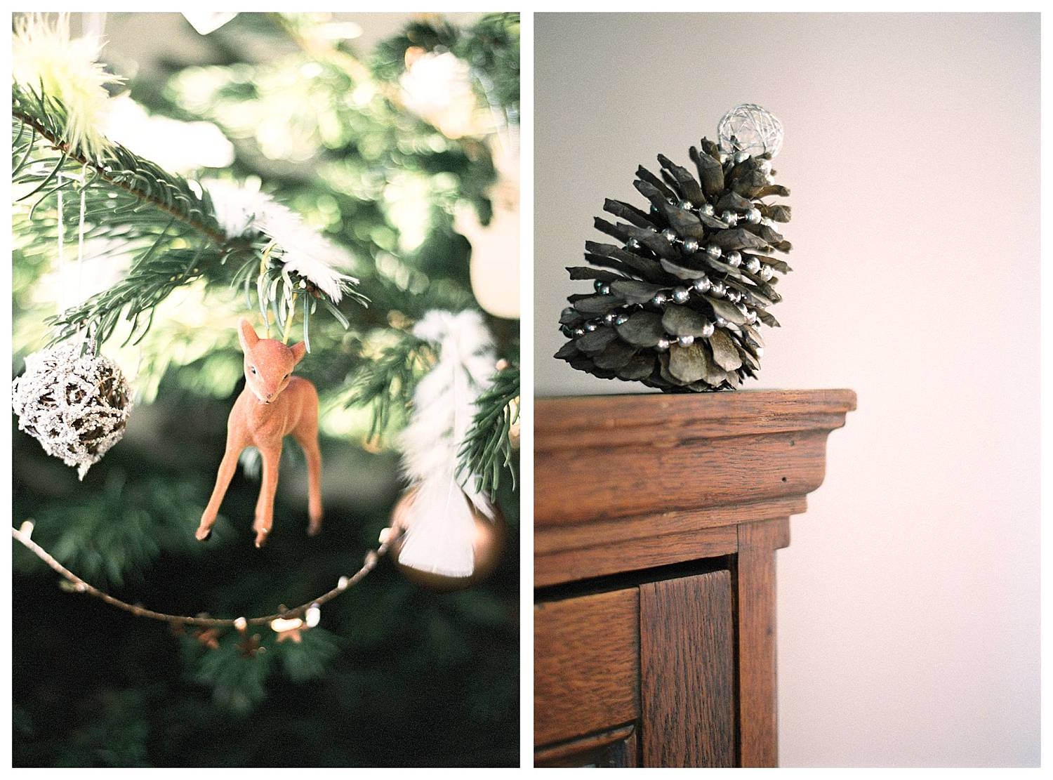 Pine cone and Christmas tree inspiration