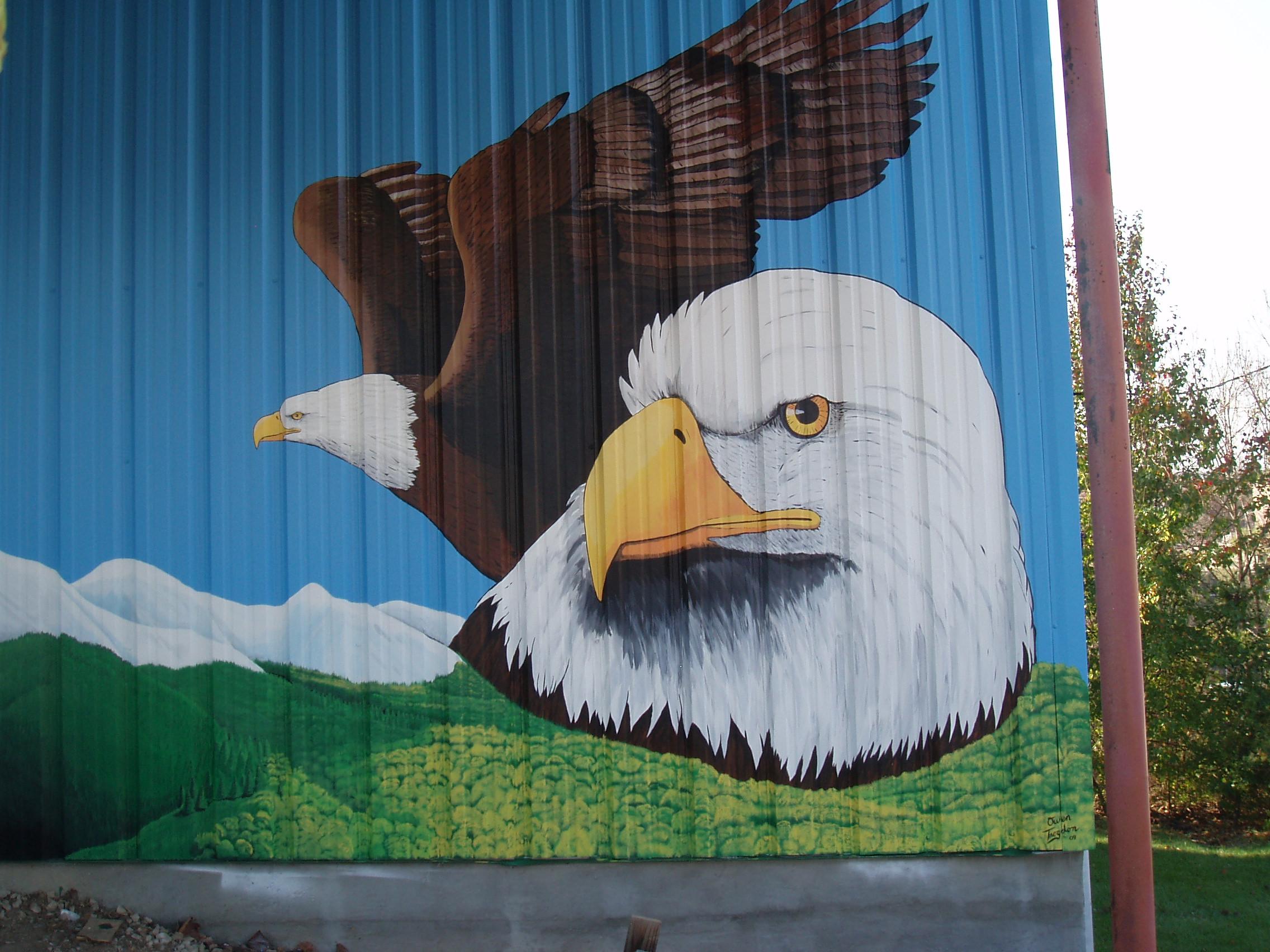 western mural_branson_shirtshack2.JPG
