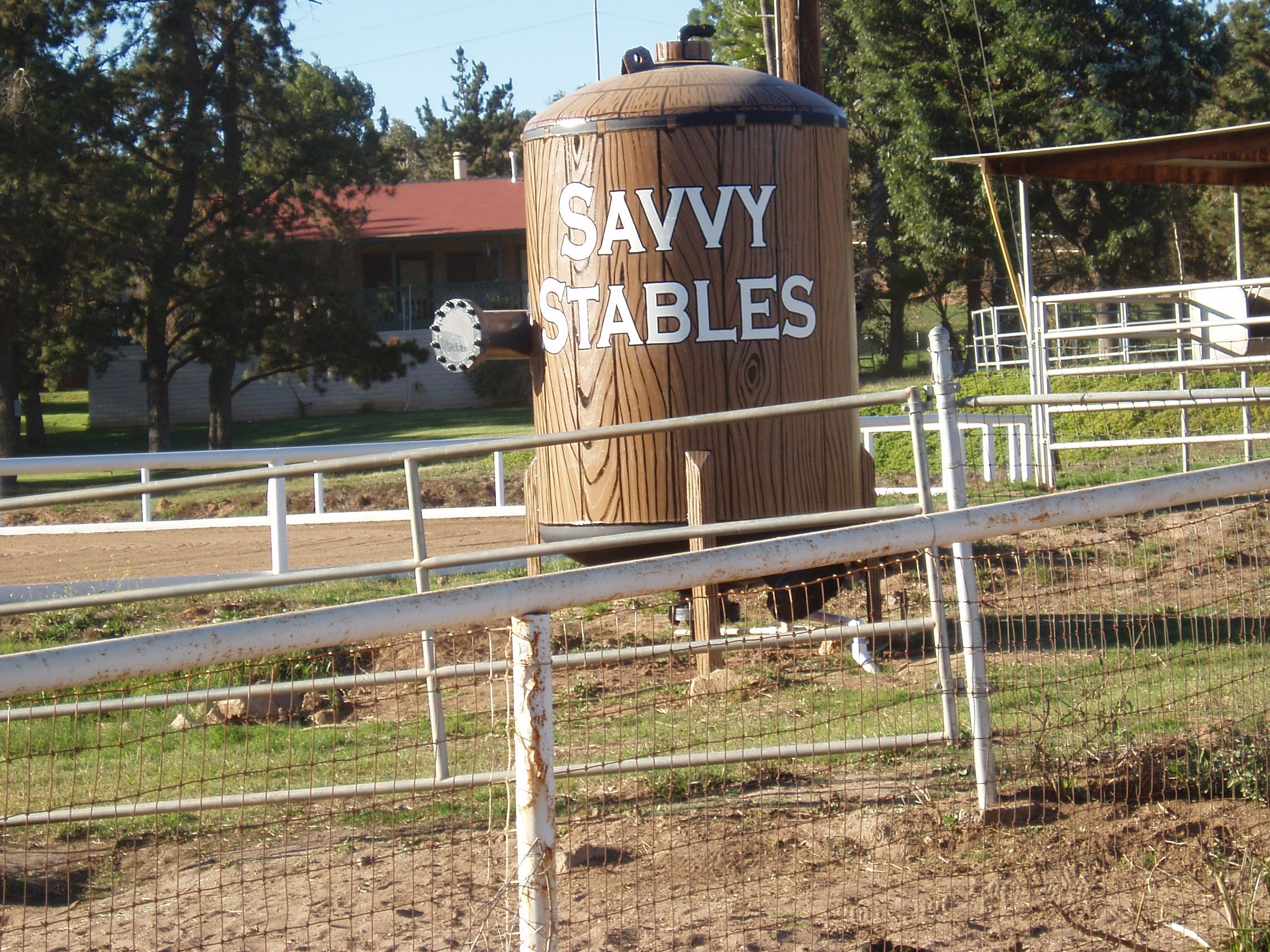 Hand Painted Signs_Savvy Stables 2.JPG