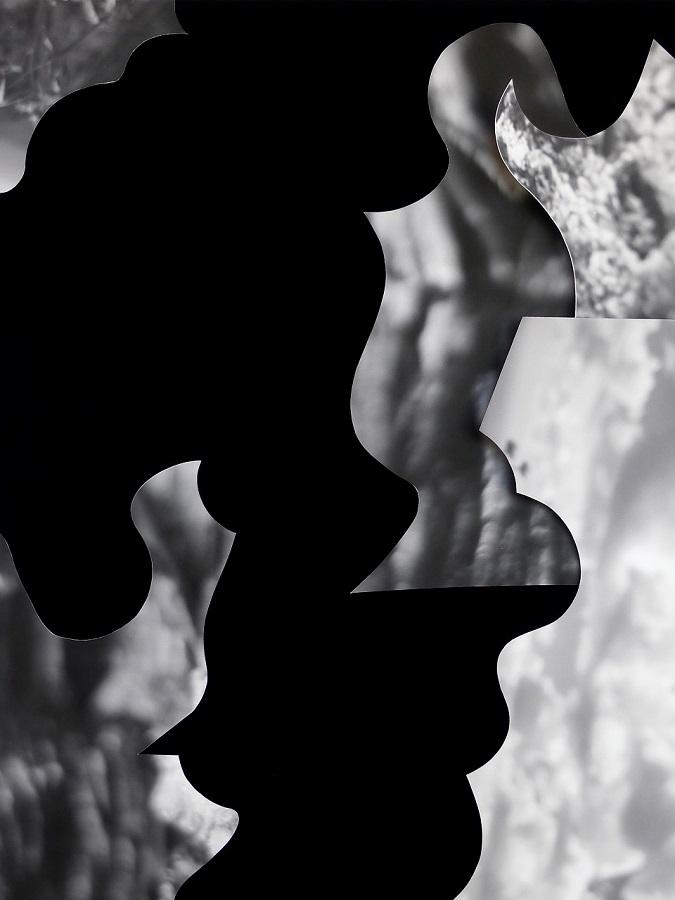 Collage-11-CM-Kubricht_final.jpg