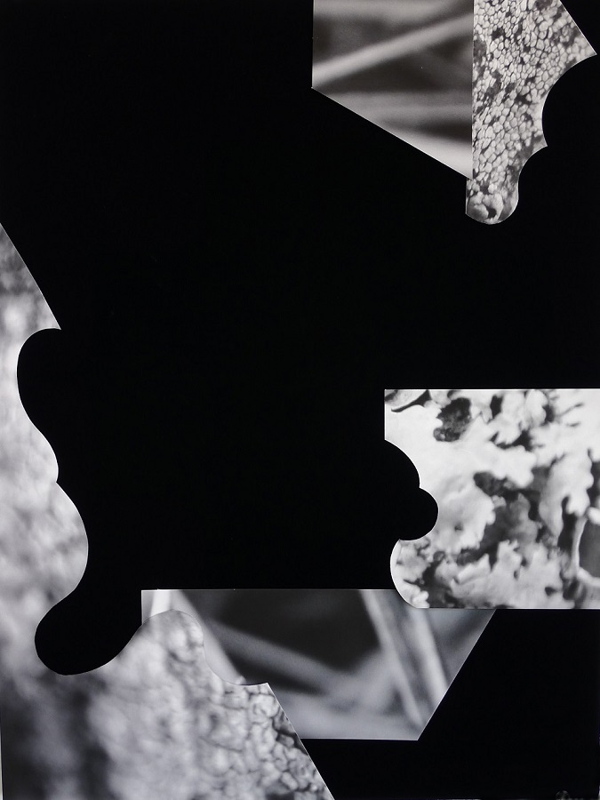 Collage-13-CM-Kubricht_final.jpg