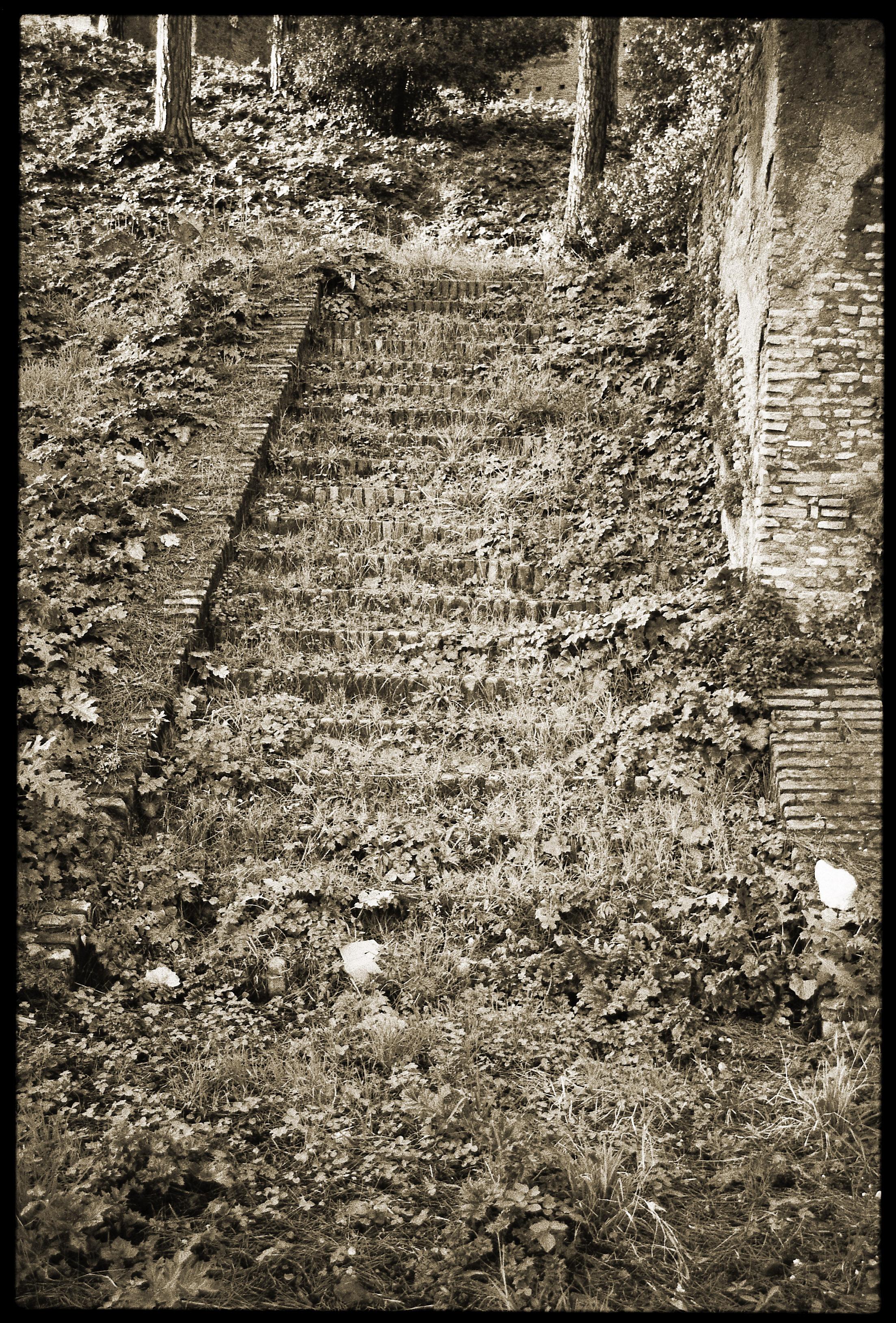 11_stairs.jpg
