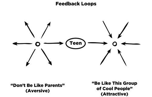 Teen Feedback Loops.jpg