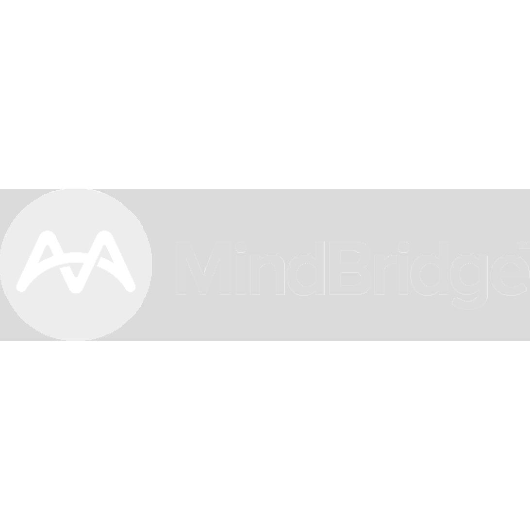 mindbrifge grey.png