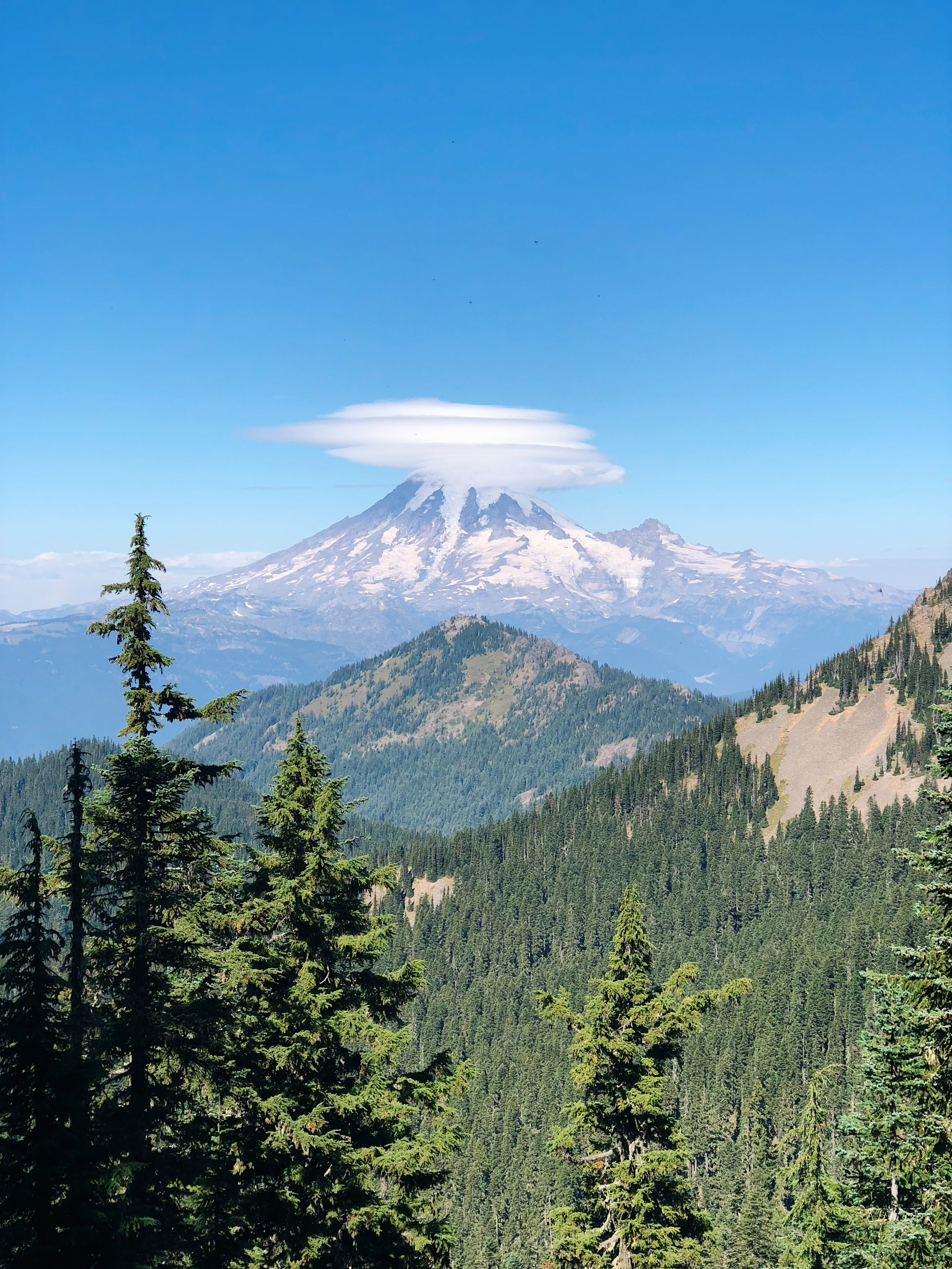 Watching the changing lenticular cloud formations over Rainier was a highlight of the day
