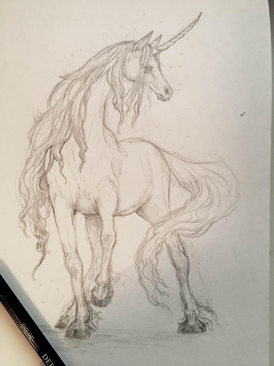 unicorn_sketch_002.jpg