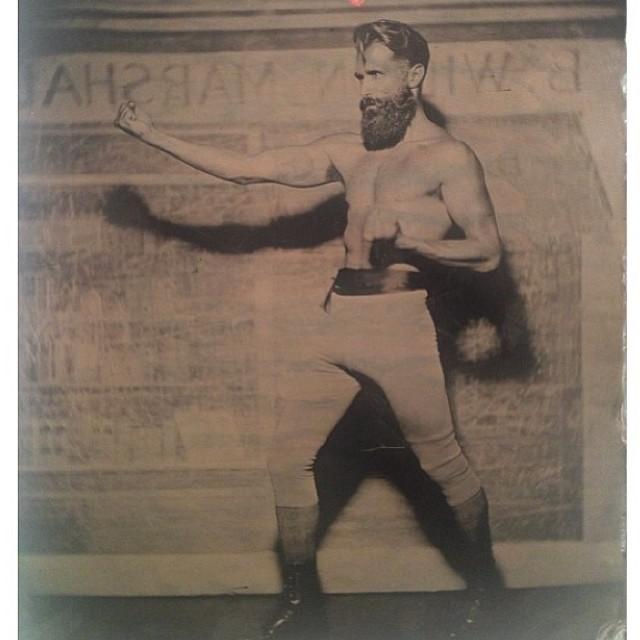 bearded-boxer.jpg