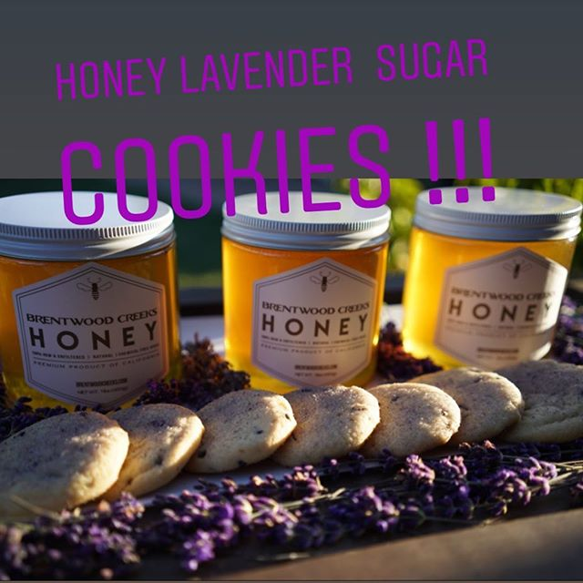 Honey Lavender Sugar Cookes -  Recipe linked in bio!