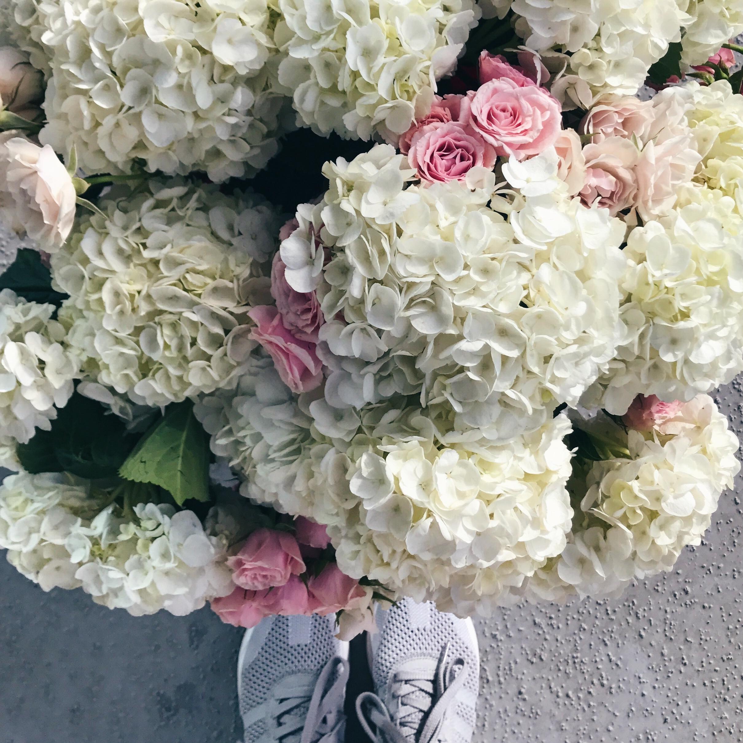 Calgary_Flowers