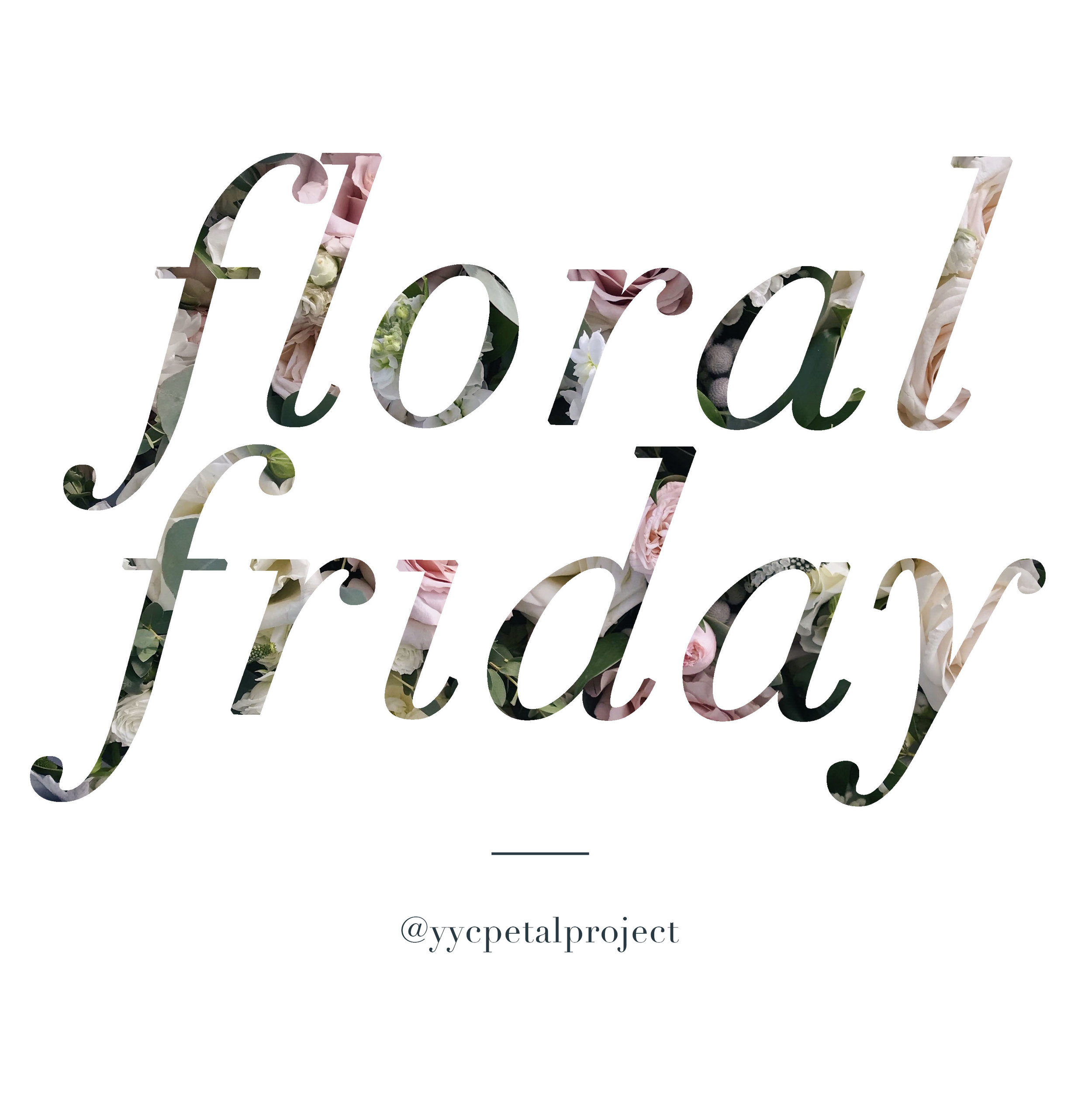 YYCPetalProject_FloralFriday