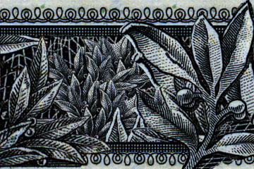 dollar-art.jpg