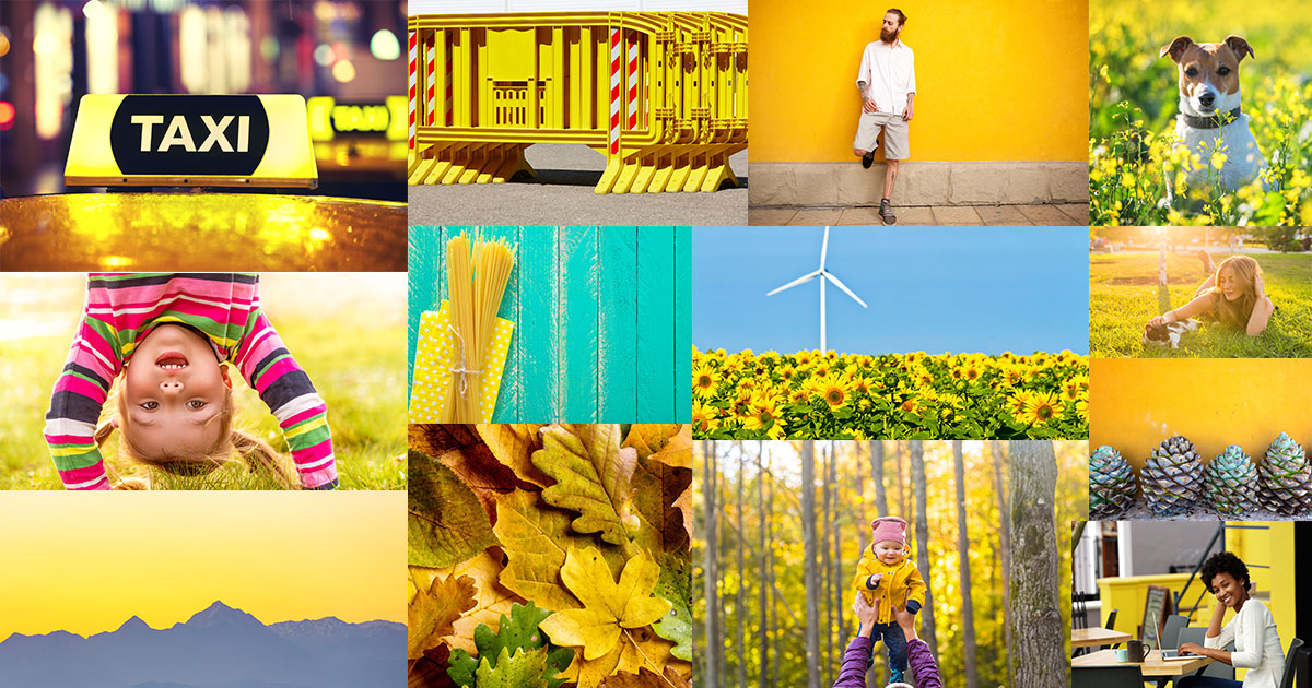Authentic, Bold, Natural: How We Redesigned Our Stock Photo Library for 2017