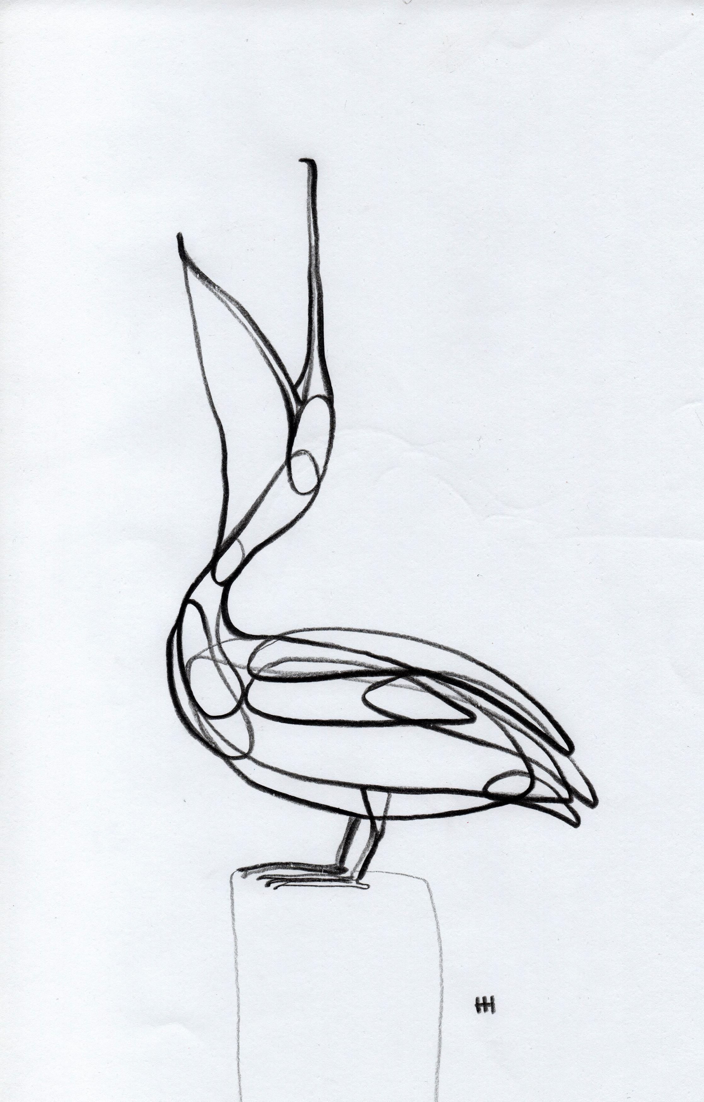 Line Drawing Originals