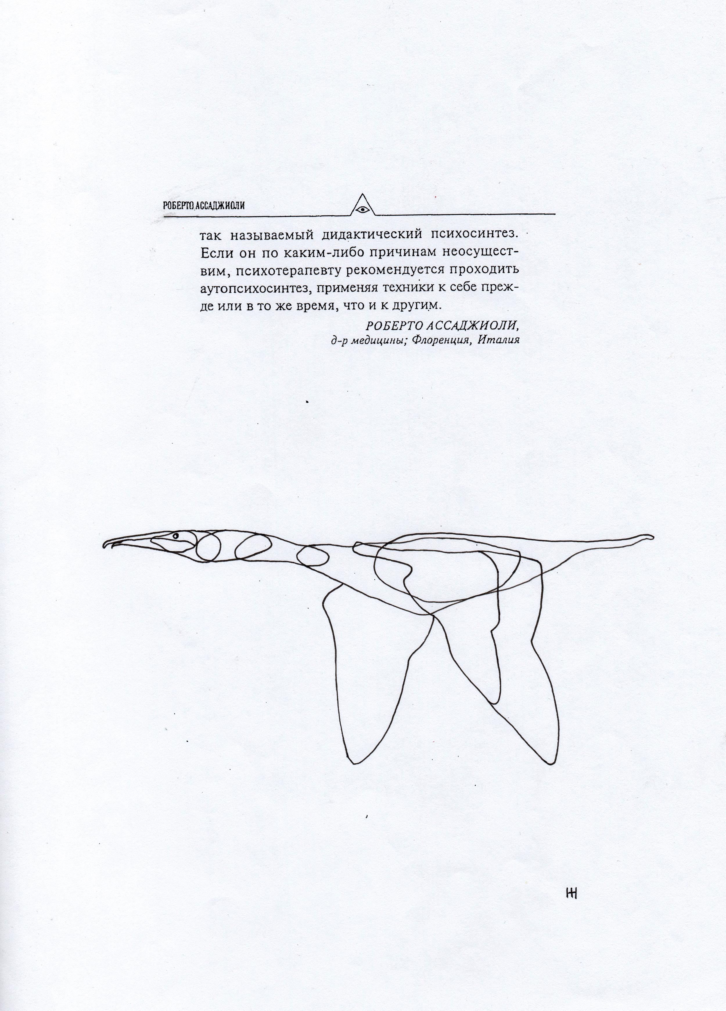 PticyLinejnye_0 15.jpg