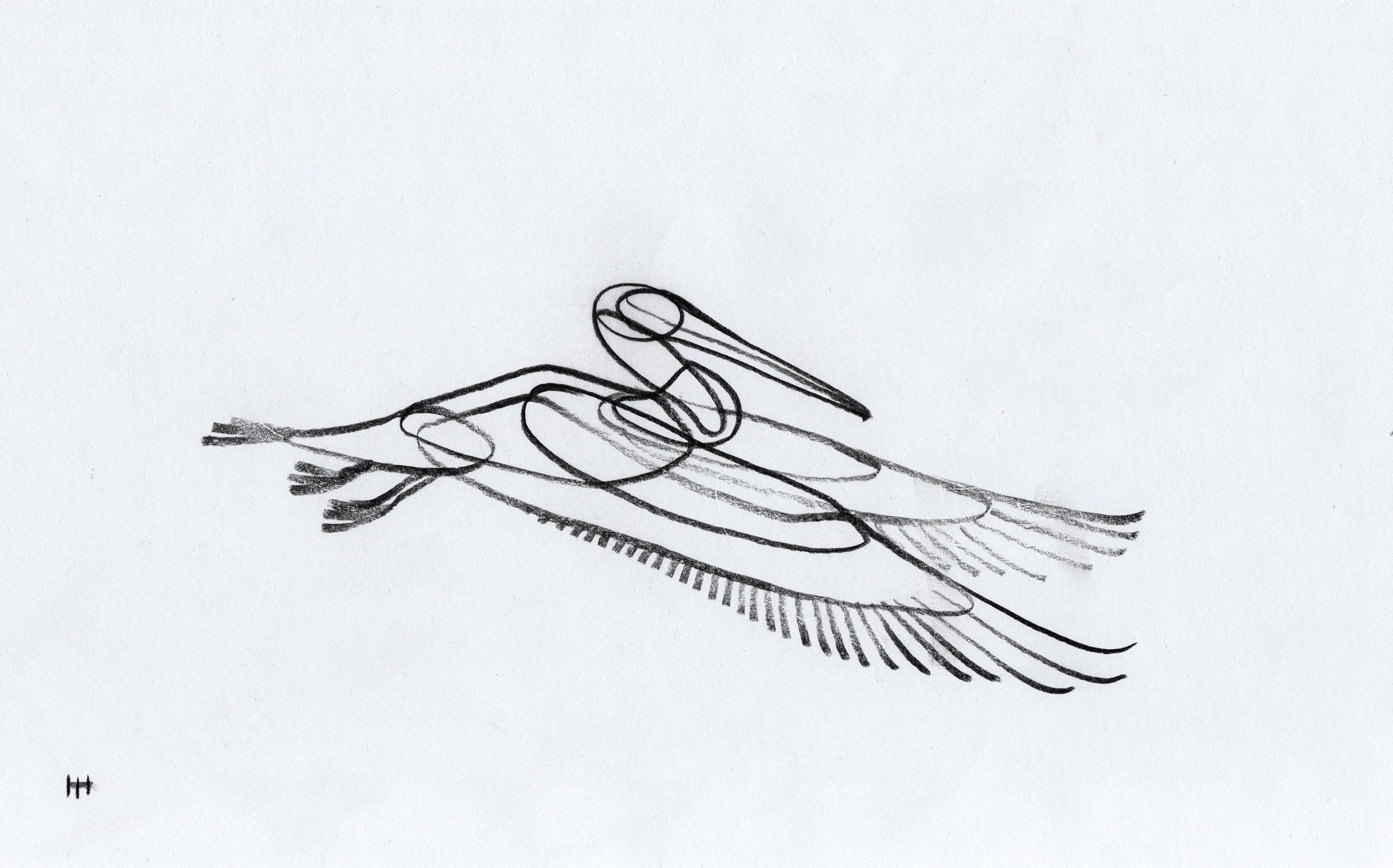 PticyLinejnye_0 33.jpg