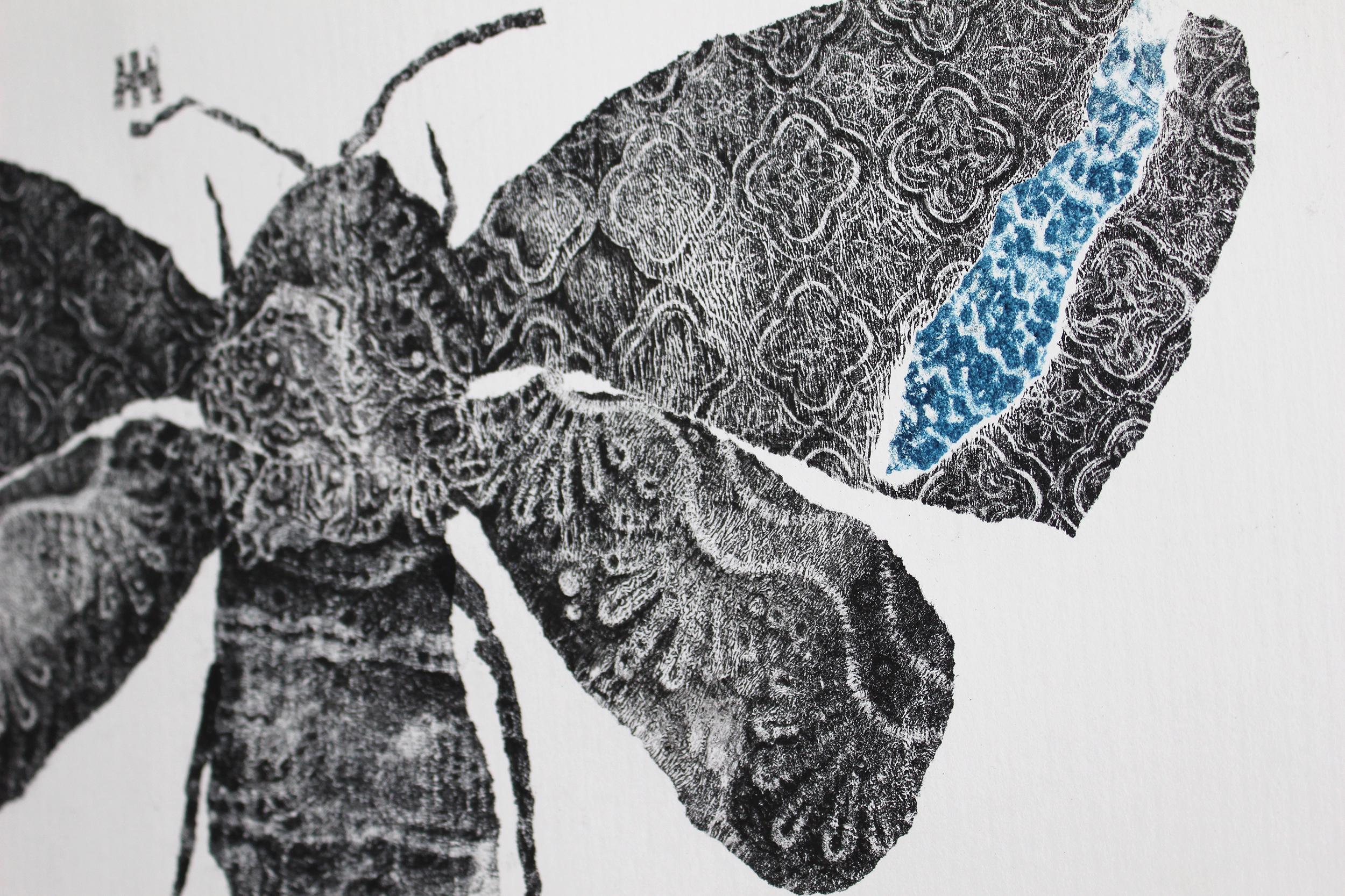 Noctuidae No.1_Saatchi_3.jpg