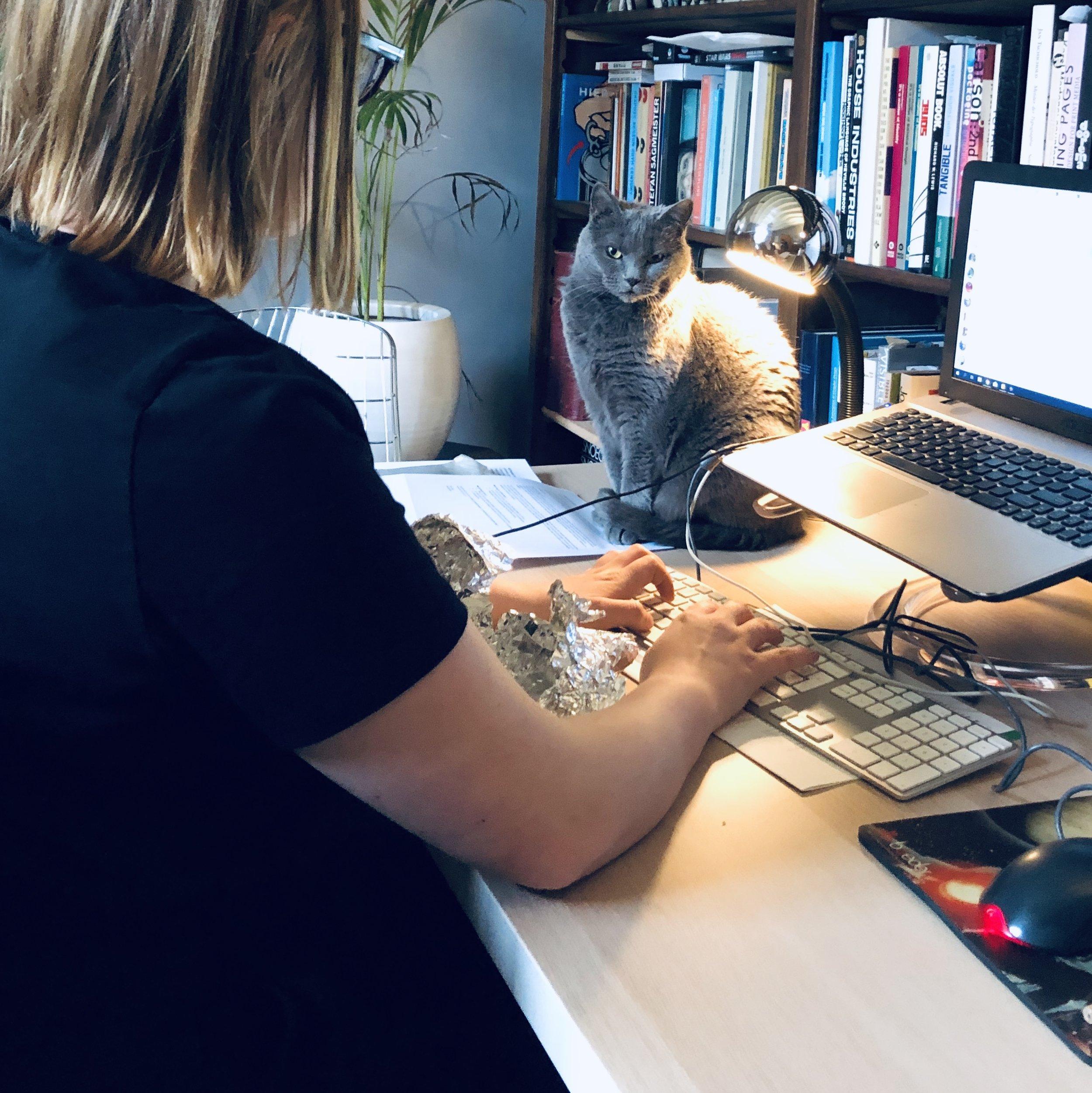 © Stille Bliksem - Aan het werk met onze personal assistant Schaduw