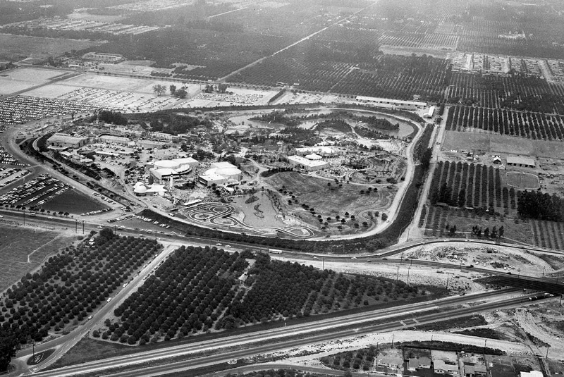 Vintage 1955 areal image of Disneyland, surrounded by orchards (courtesy the  LA Times )