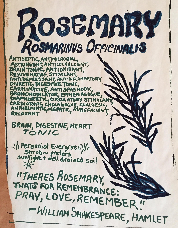 Rosemary poster.jpg